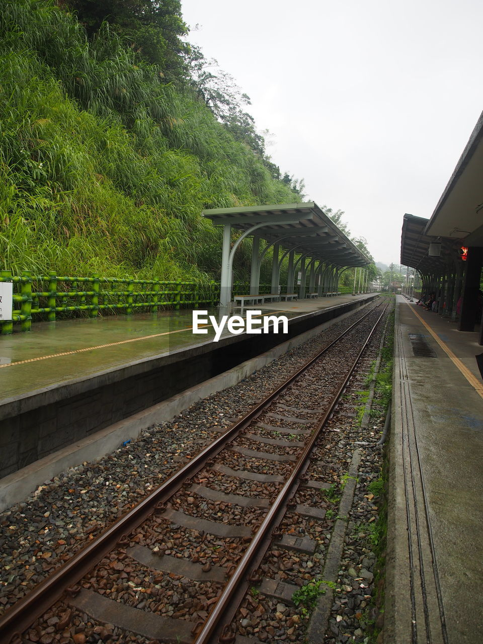 rail transportation, track, railroad track, transportation, tree, nature, plant, sky, mode of transportation, public transportation, no people, railroad station platform, railroad station, the way forward, day, architecture, direction, diminishing perspective, vanishing point, built structure, long
