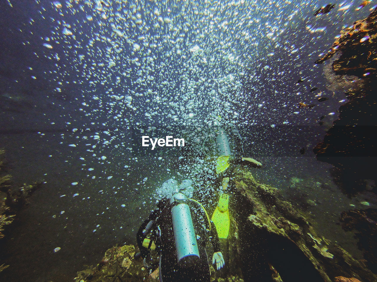 High Angle View Of Scuba Divers Swimming Undersea