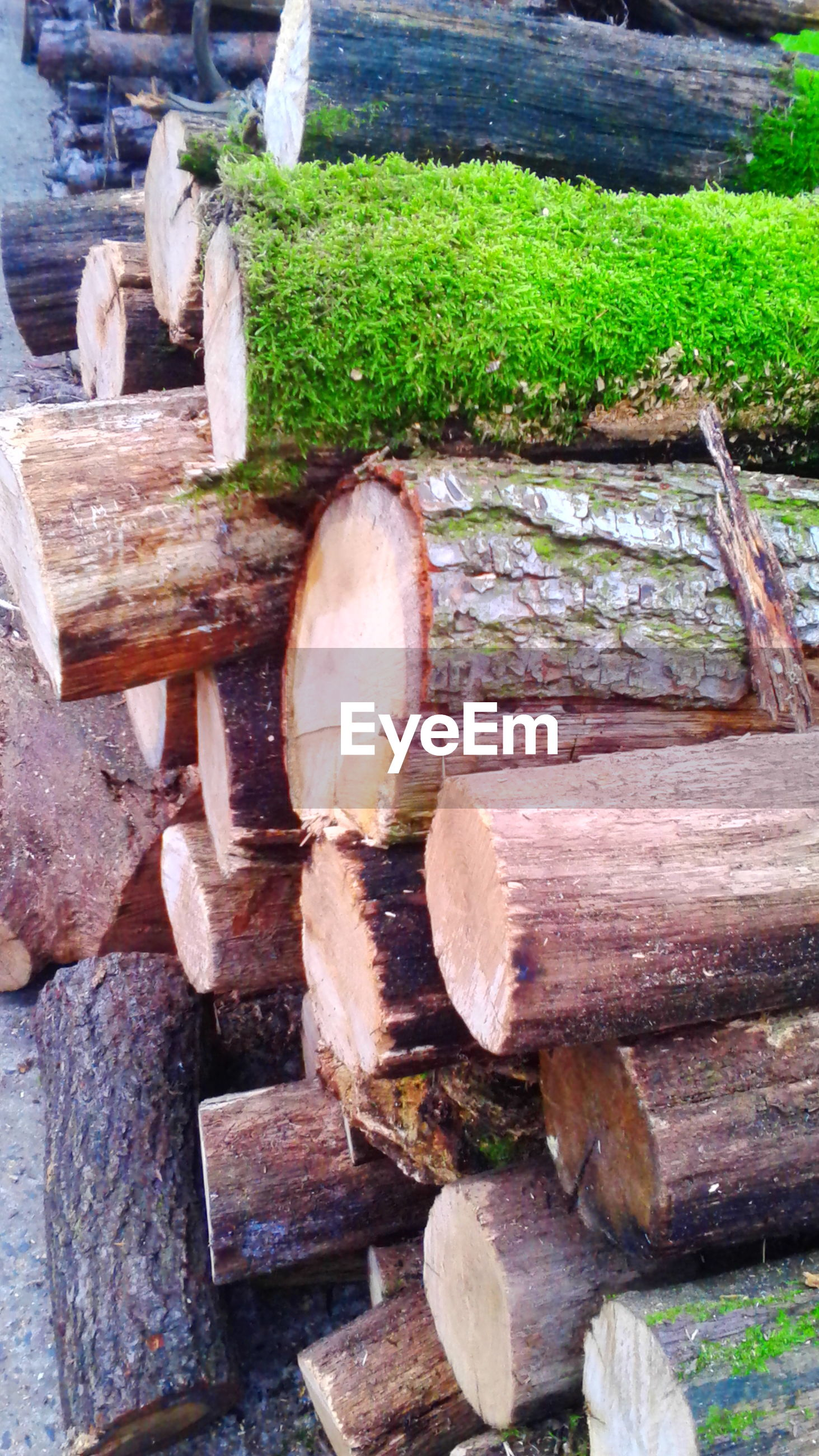 wood - material, abandoned, old, log, damaged, wooden, firewood, deforestation, lumber industry, obsolete, wood, stack, field, day, deterioration, outdoors, weathered, run-down, no people, high angle view