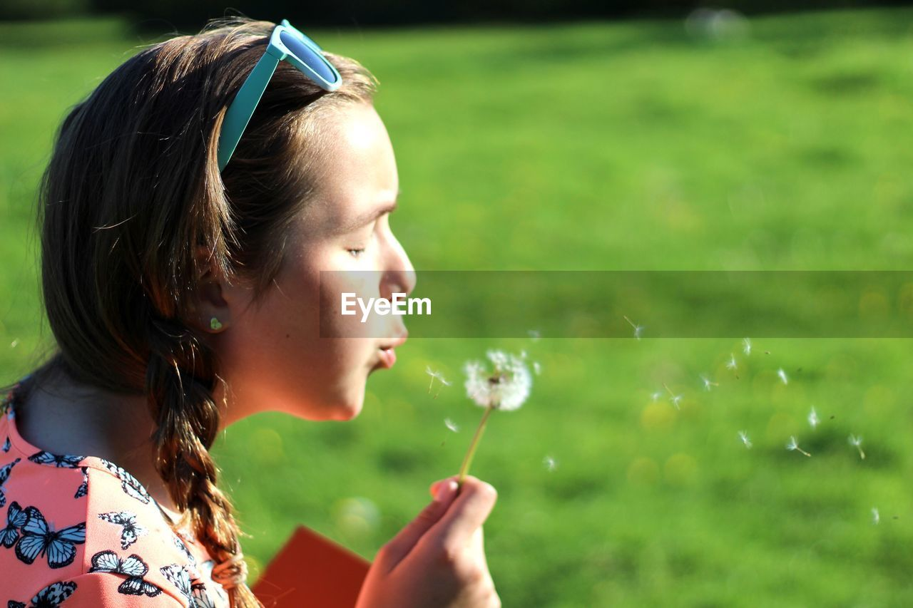 Side View Of Girl Blowing Dandelion