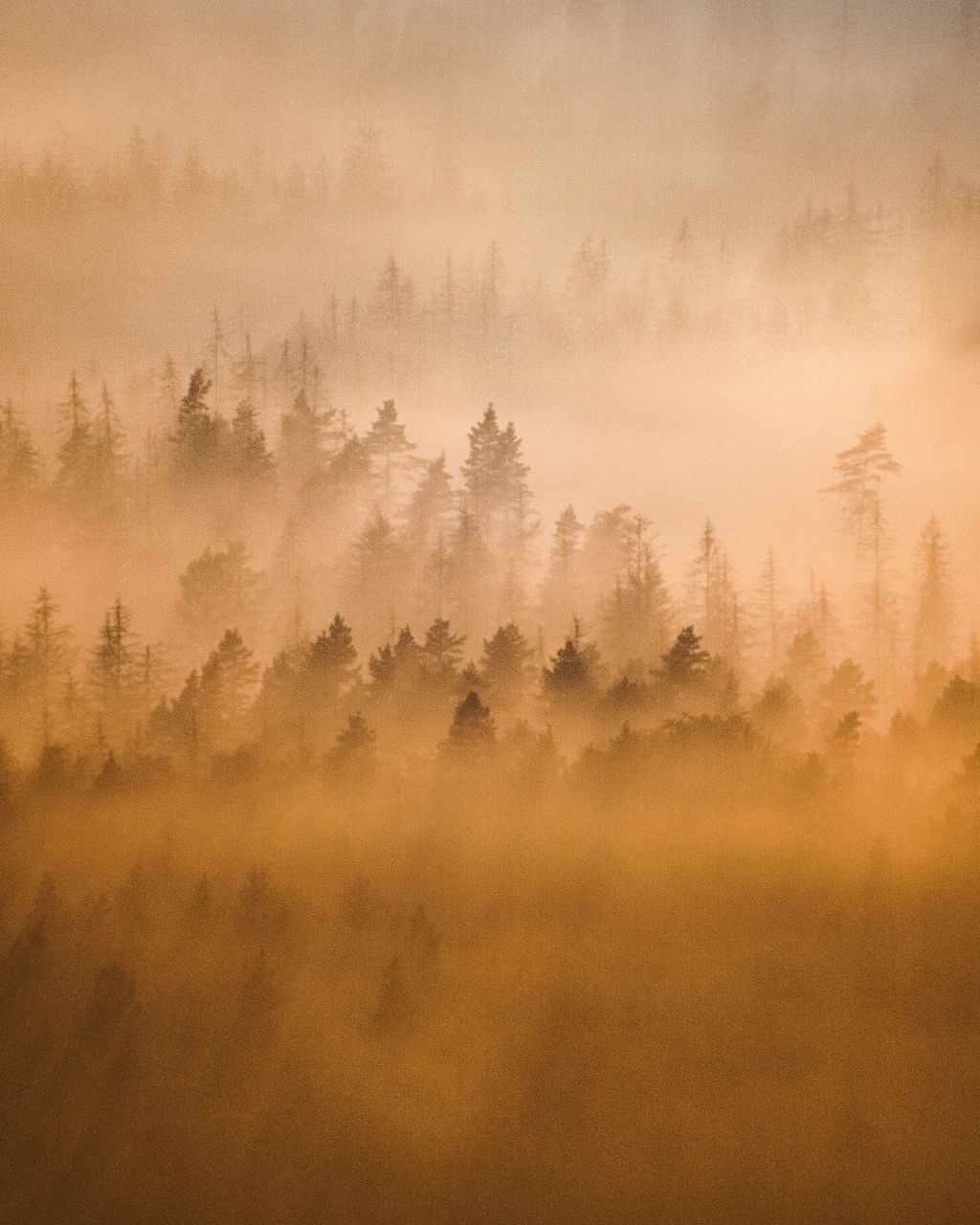 Scenic view of fog on land against sky