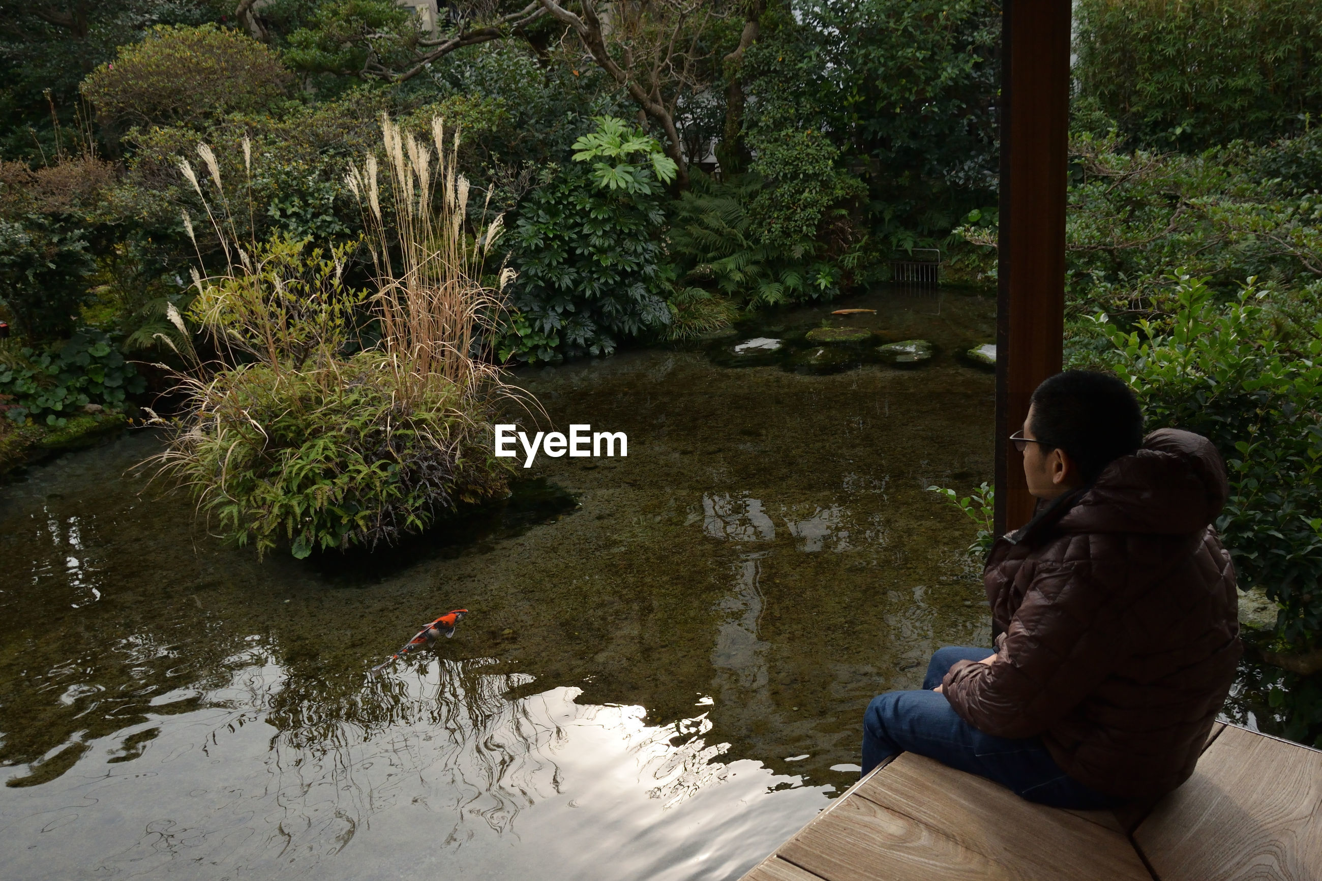 Man sitting in a japanese garden by water