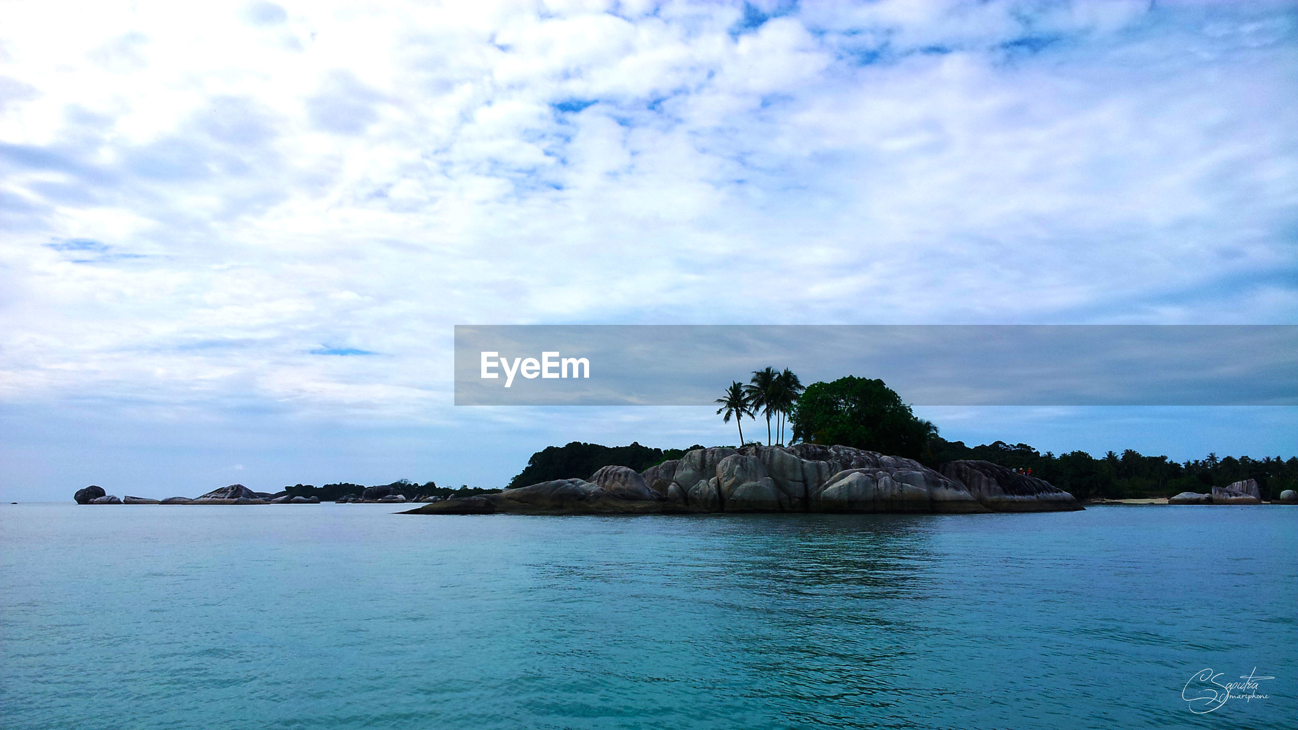 sea, tree, nature, sky, water, beach, tranquility, outdoors, scenics, no people, tranquil scene, cloud - sky, beauty in nature, palm tree, day