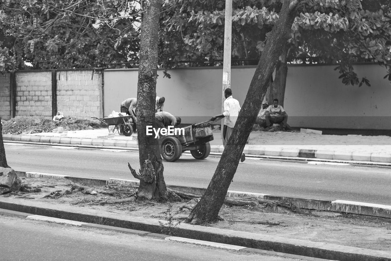 tree, transportation, day, men, plant, real people, nature, mode of transportation, occupation, city, outdoors, street, land vehicle, people, working, childhood, two people, motor vehicle, child, full length