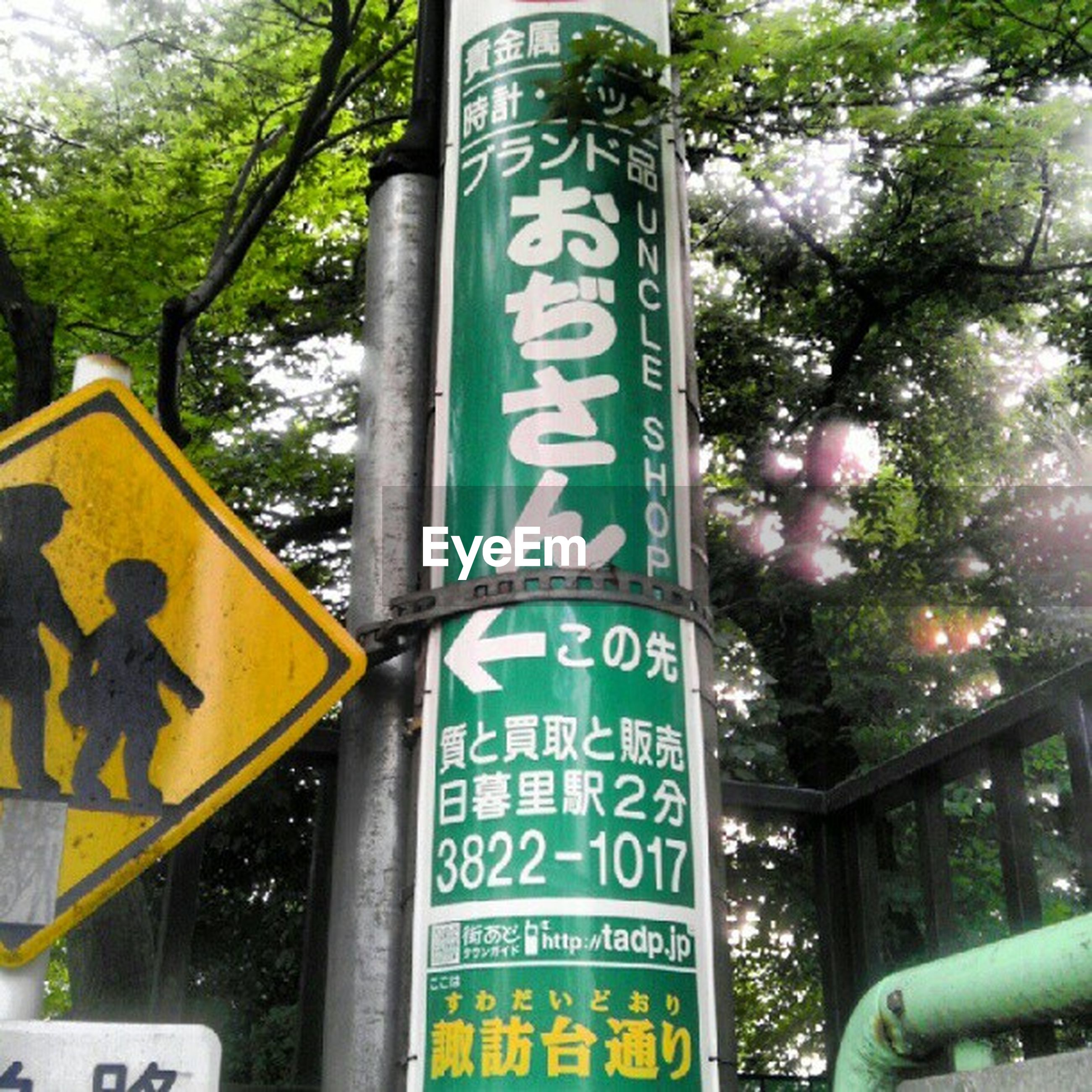 text, communication, western script, information sign, sign, road sign, guidance, capital letter, information, non-western script, tree, directional sign, warning sign, arrow symbol, direction, signboard, sign board, arrow sign, low angle view, pole