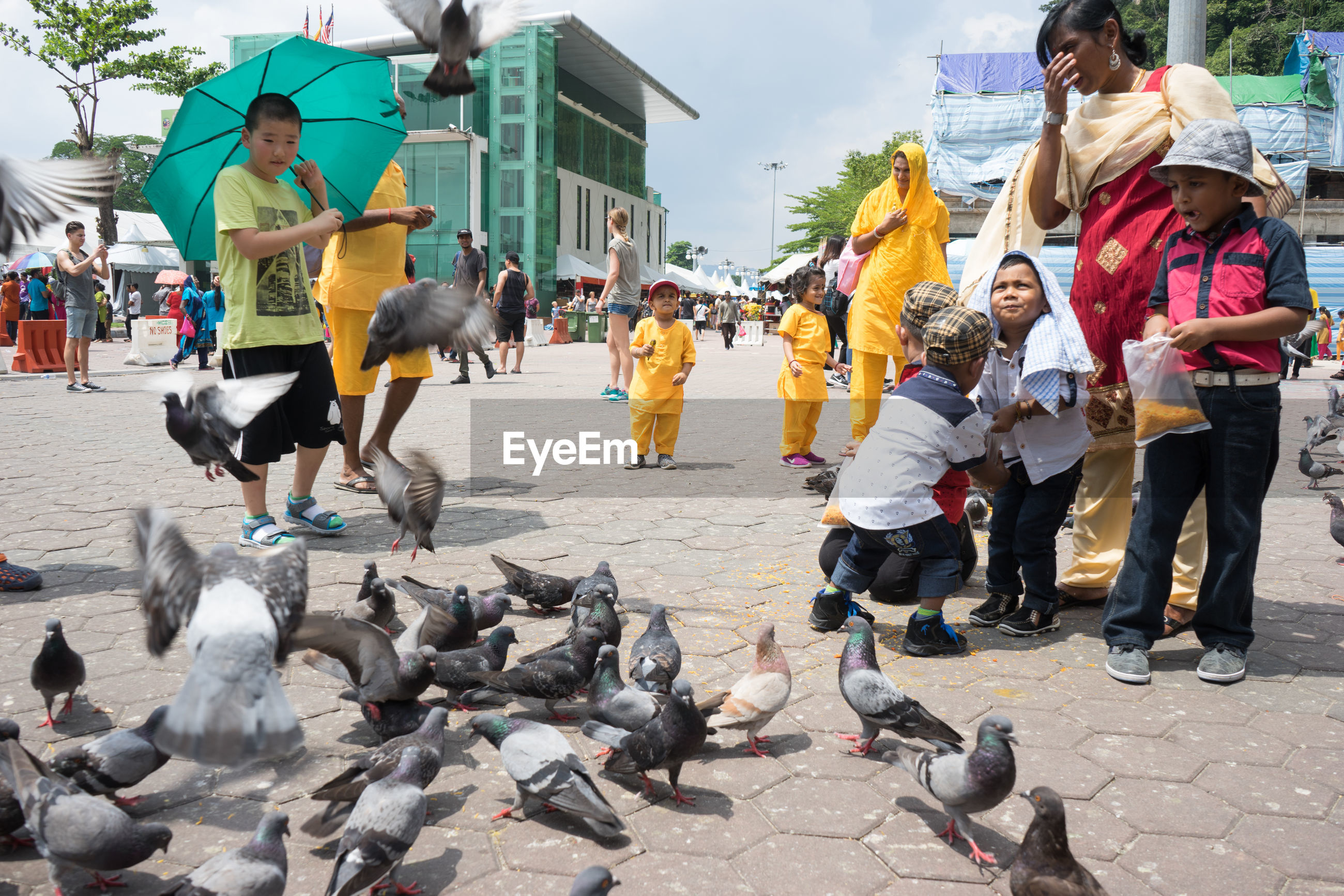 large group of animals, real people, bird, street, motion, building exterior, outdoors, day, flying, flock of birds, large group of people, city, built structure, animals in the wild, togetherness, lifestyles, men, domestic animals, mammal, architecture, full length, spread wings, people