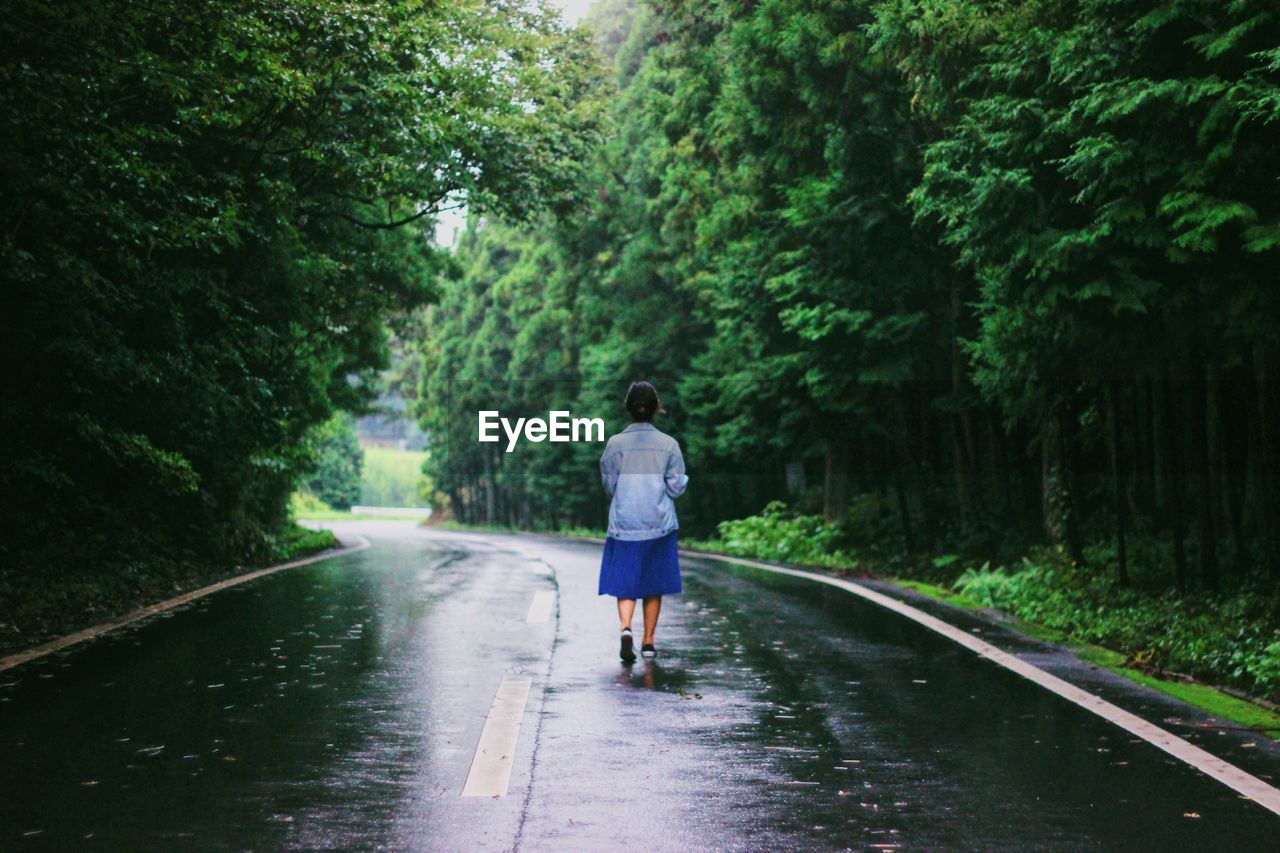 Rear View Of Woman Walking On Wet Road Amidst Trees During Rainy Season