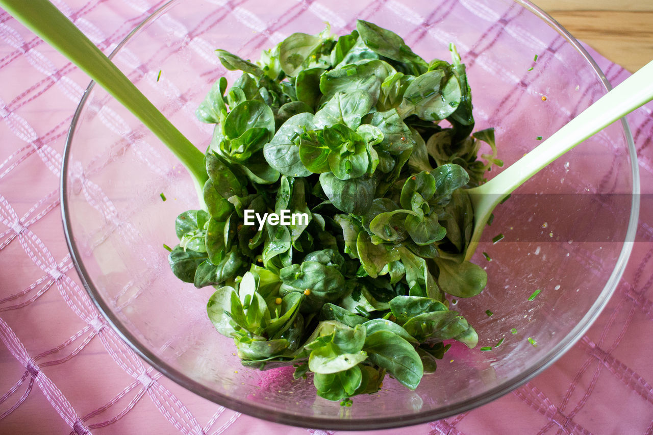 High Angle View Of Green Salad In Glass Bowl