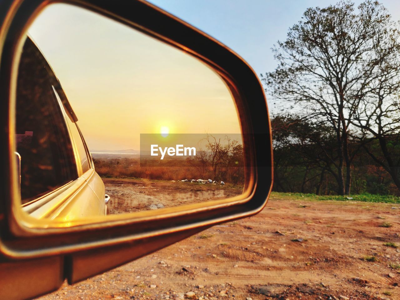 Reflection of trees and sky on side-view mirror during sunset