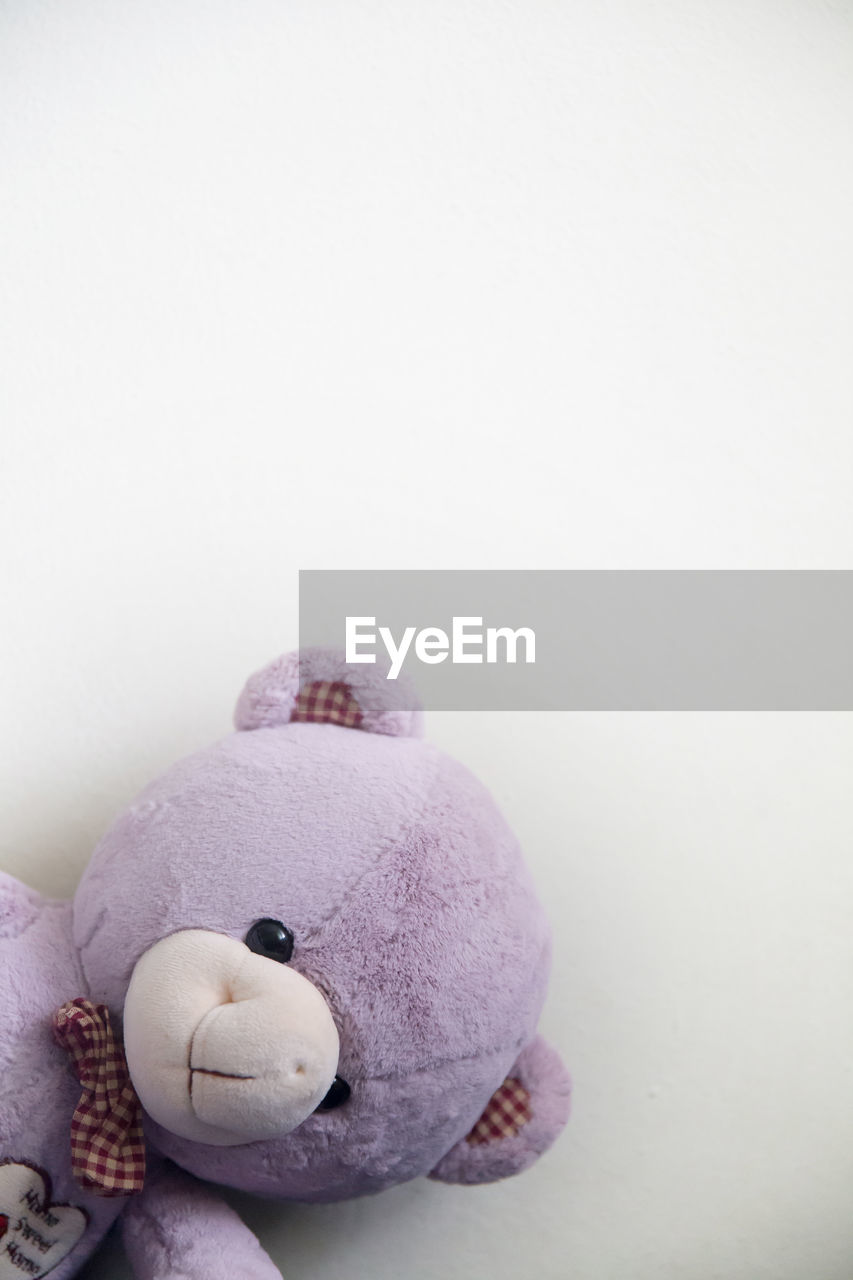 toy, stuffed toy, teddy bear, representation, still life, indoors, copy space, childhood, studio shot, white background, toy animal, human representation, close-up, softness, high angle view, cut out, art and craft, abandoned, purple