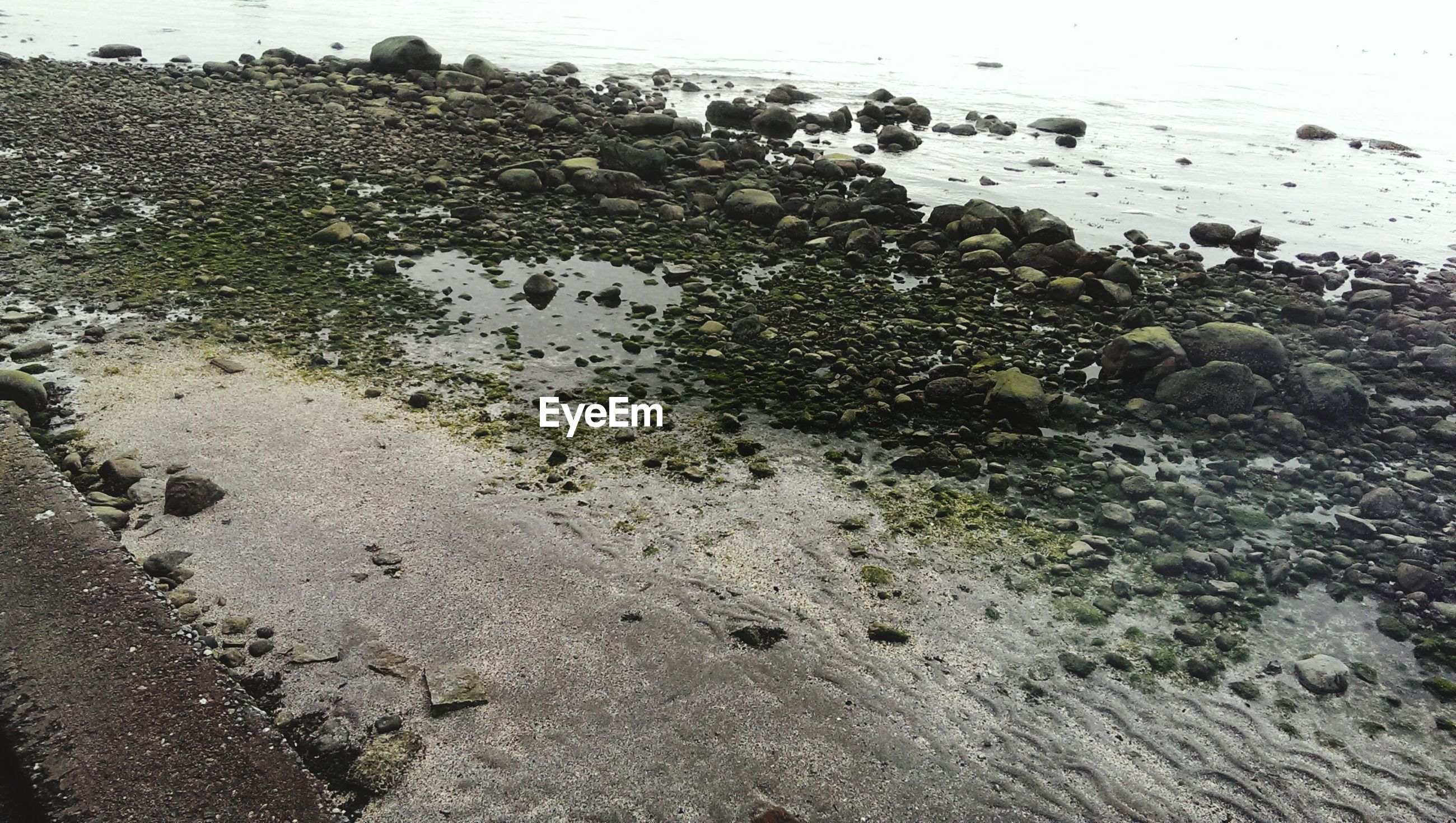 High angle view of stones by beach