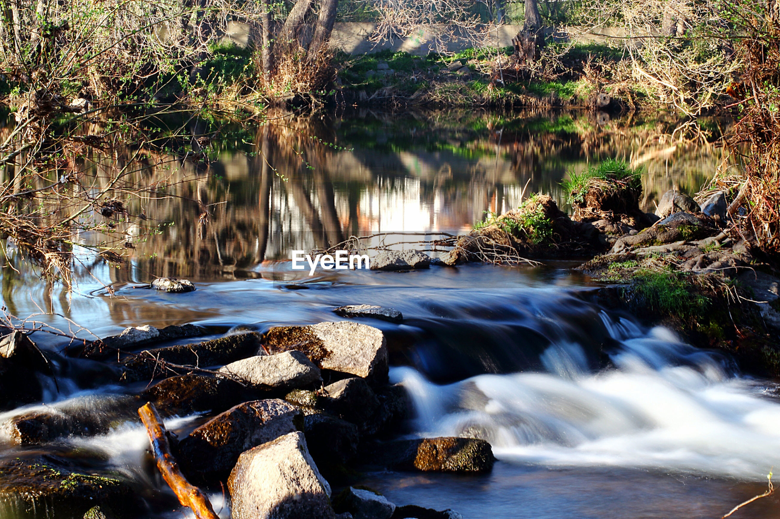 water, reflection, nature, tree, no people, lake, motion, stream - flowing water, beauty in nature, outdoors, waterfall, close-up, day, sky, freshness