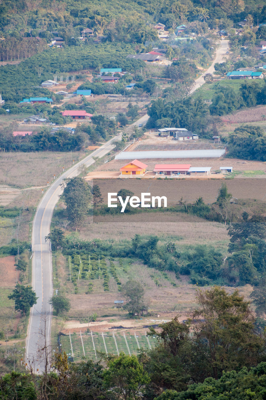 environment, landscape, plant, tree, scenics - nature, land, high angle view, aerial view, nature, day, no people, beauty in nature, transportation, road, field, architecture, tranquil scene, outdoors, growth, mountain