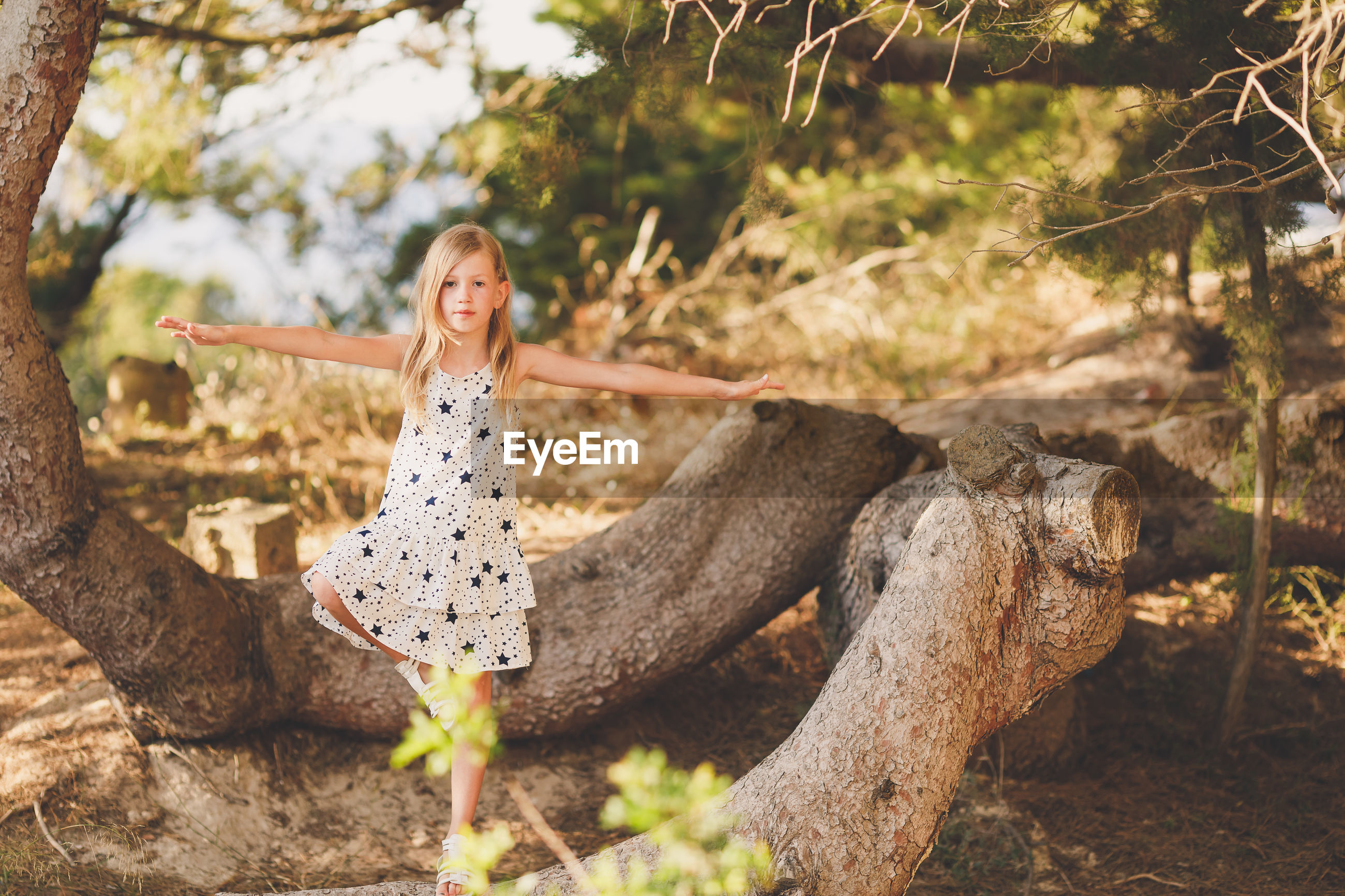 Portrait of girl standing on tree