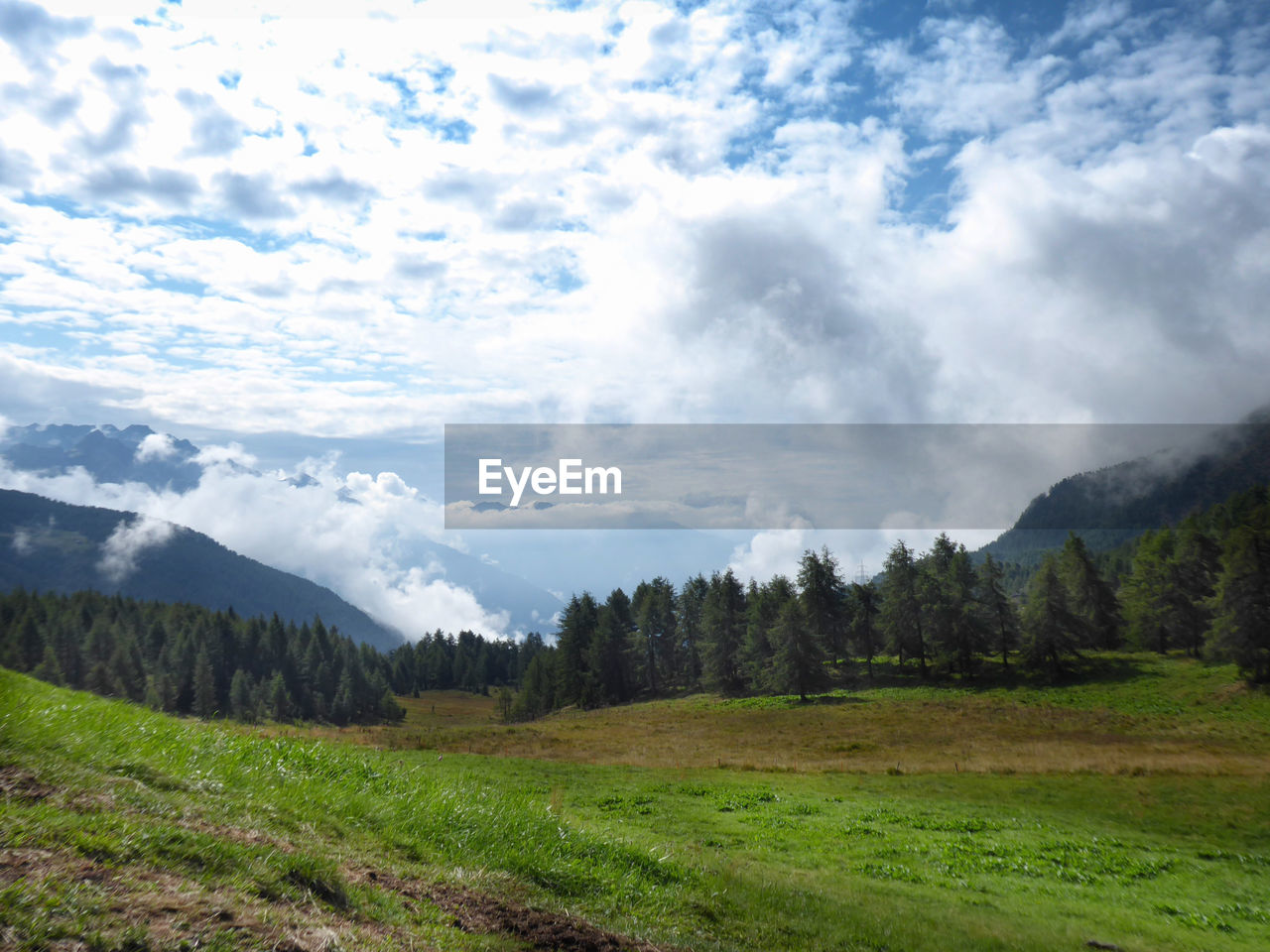 1800 Mt Mortirolo Pass Backlit Beauty In Nature Cloud - Sky Day Environment Grass Land Landscape Landscape_photography Mountain Nature No People Non-urban Scene Outdoors Pastures Scenics - Nature Sky Tranquil Scene Tranquility