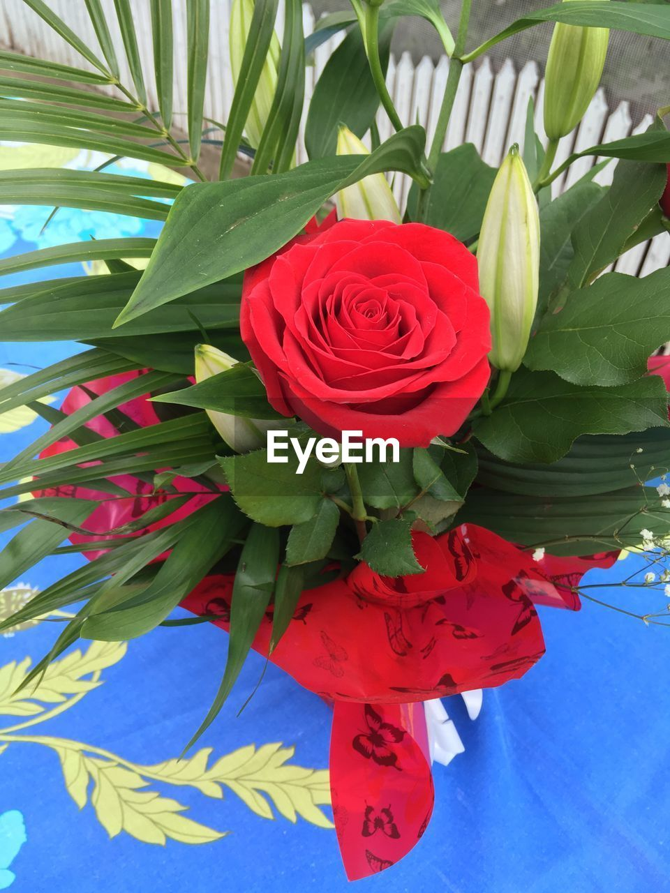 flower, flowering plant, plant, beauty in nature, red, freshness, leaf, close-up, vulnerability, plant part, flower head, petal, fragility, inflorescence, nature, rose, rose - flower, flower arrangement, bouquet, green color, no people, outdoors, bunch of flowers