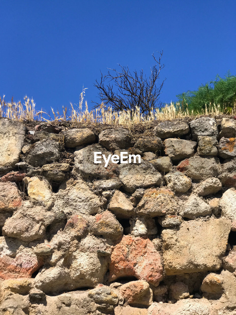sky, blue, nature, clear sky, day, solid, no people, rock, plant, rock - object, tree, sunlight, tranquility, outdoors, non-urban scene, tranquil scene, copy space, textured, landscape, low angle view, stone wall