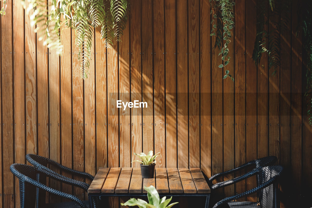 plant, wood - material, fence, seat, boundary, nature, chair, barrier, architecture, no people, growth, day, potted plant, built structure, leaf, absence, sunlight, empty, relaxation, plant part, outdoors