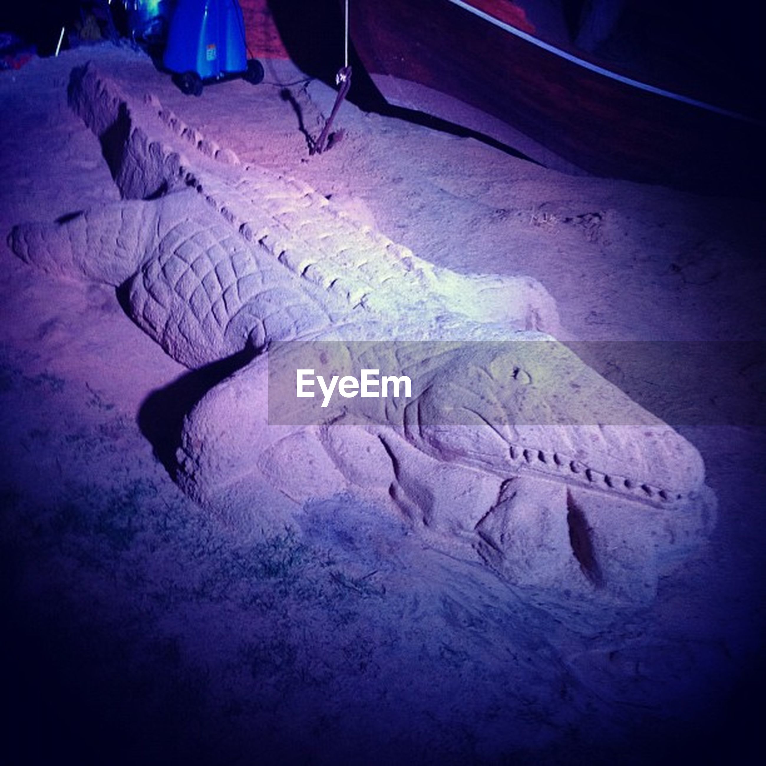 art and craft, sand, creativity, animal themes, animals in the wild, art, wildlife, close-up, text, blue, animal representation, nature, one animal, western script, high angle view, sea life, outdoors, human representation, full length, no people