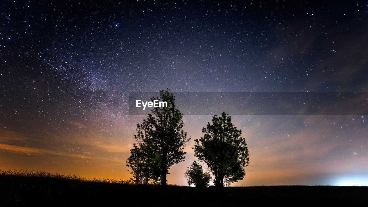 Scenic View Of Silhouette Trees Against Star Field At Night