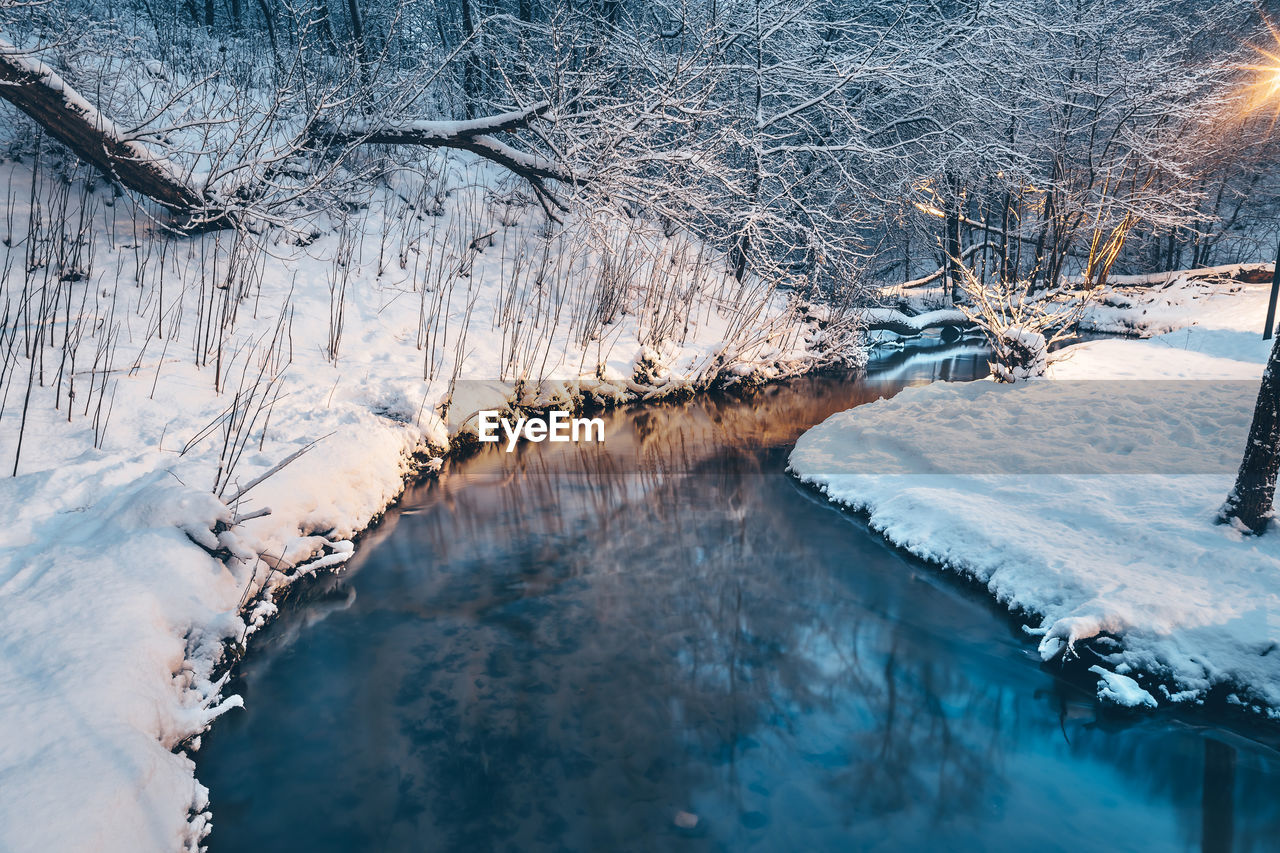 cold temperature, snow, winter, tree, beauty in nature, water, tranquility, nature, scenics - nature, plant, frozen, white color, no people, tranquil scene, environment, day, ice, non-urban scene, outdoors, flowing water, snowing