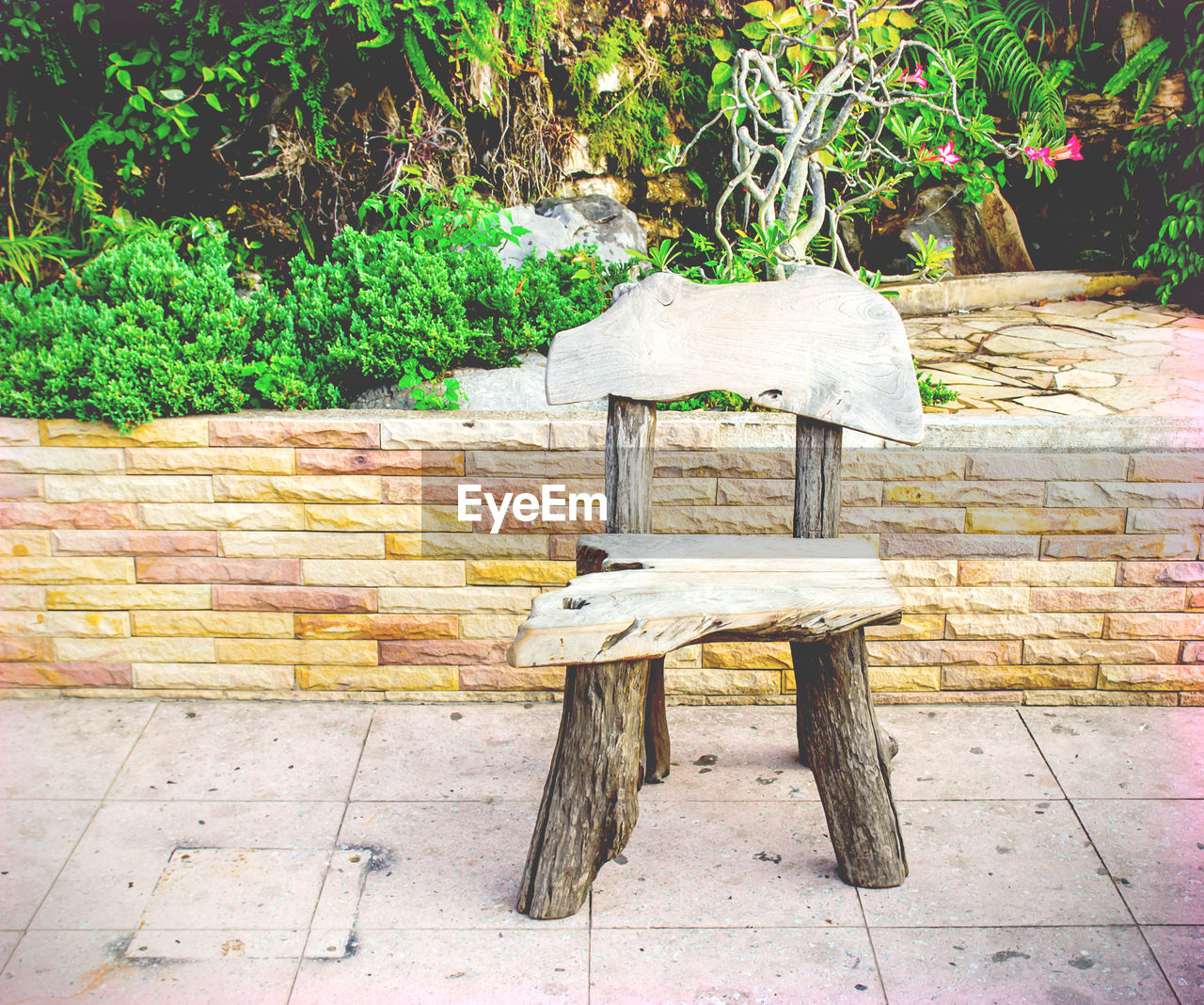 seat, plant, day, no people, chair, wood - material, nature, tree, bench, outdoors, table, growth, front or back yard, absence, wall, footpath, park, architecture, sunlight, wall - building feature