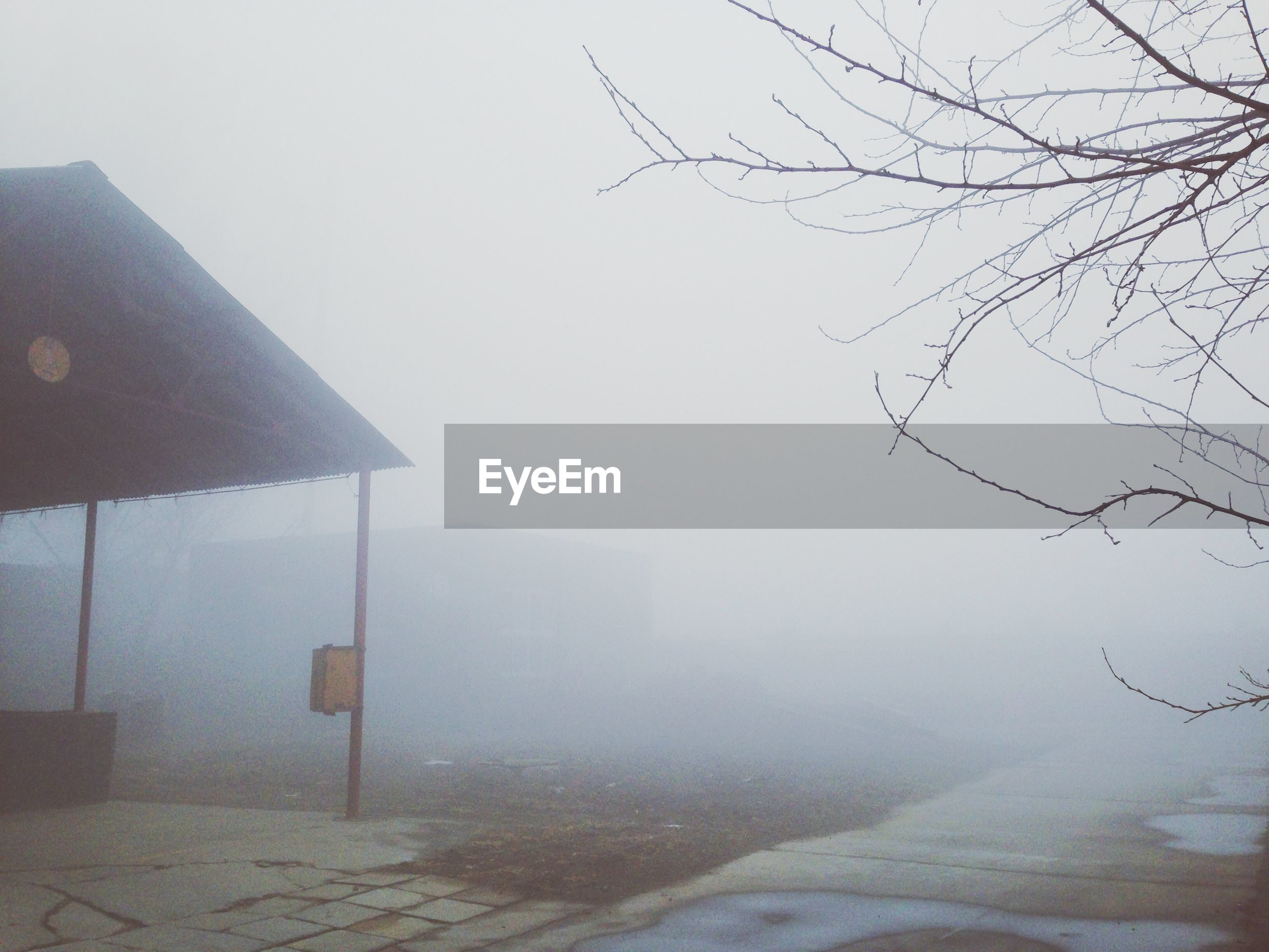 View of fog over field