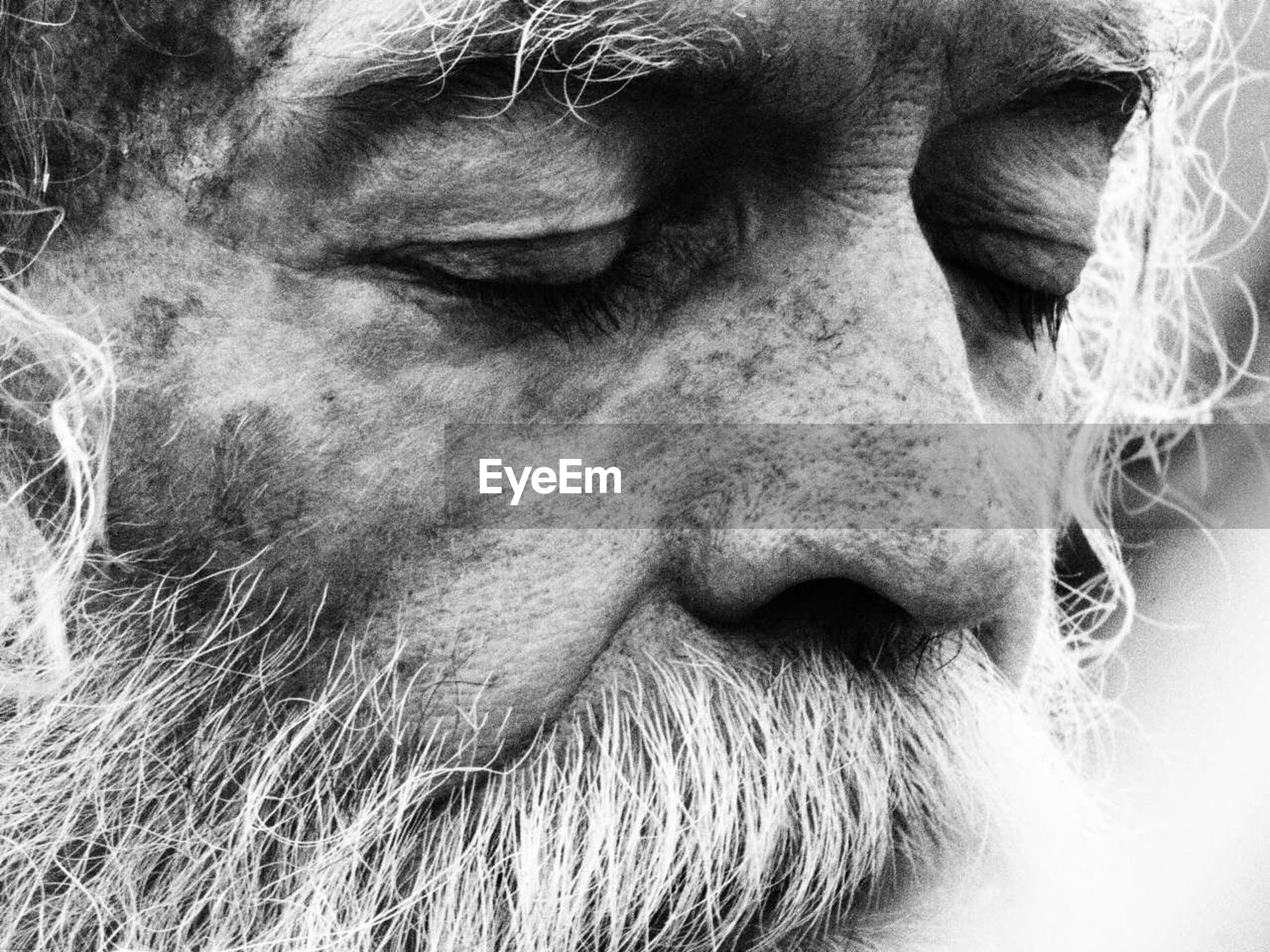 close-up, beard, one person, real people, human body part, one man only, outdoors, day, only men, adult, adults only, people