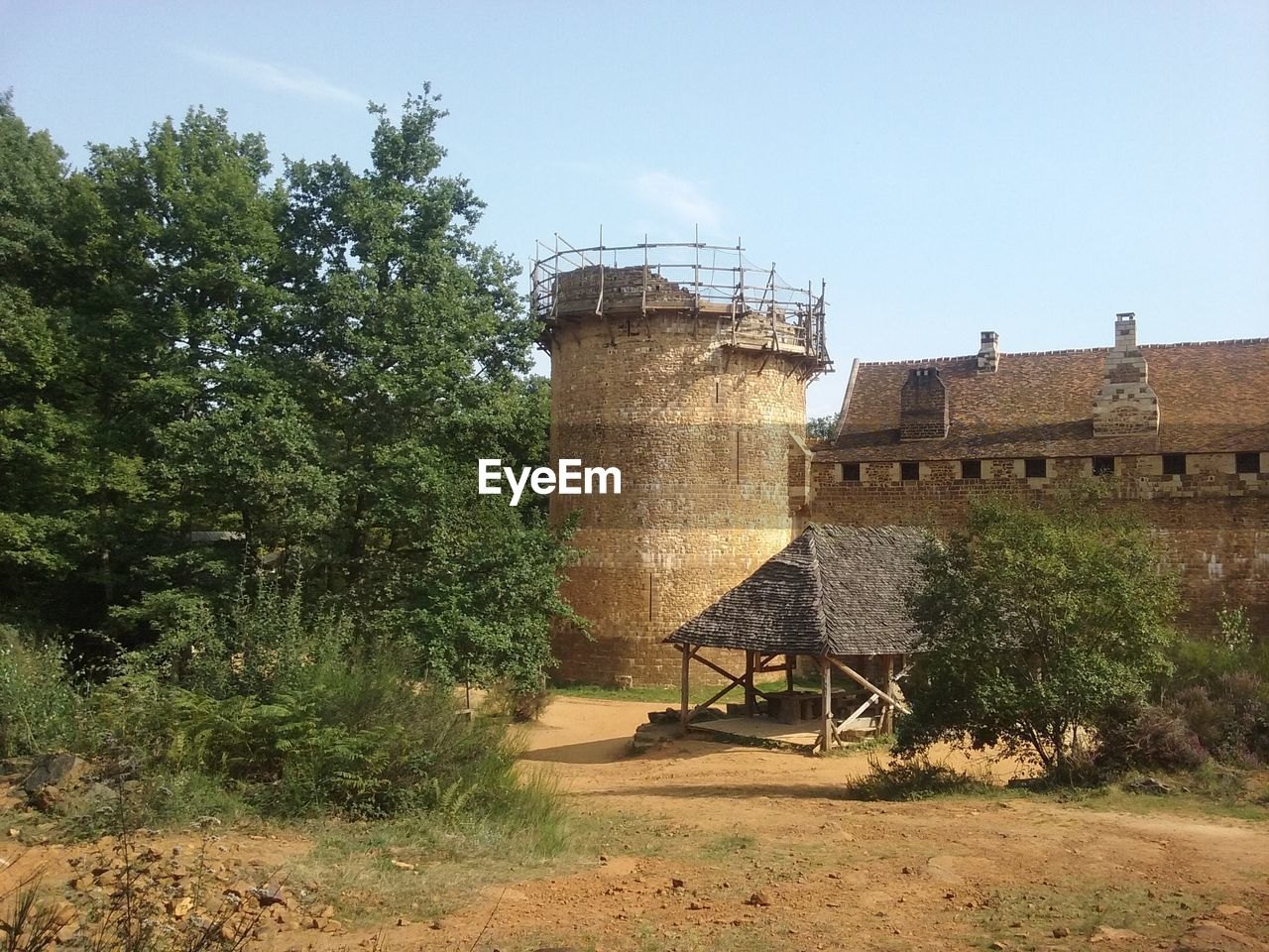 architecture, tree, built structure, day, no people, nature, growth, water tower - storage tank, outdoors, building exterior, sky