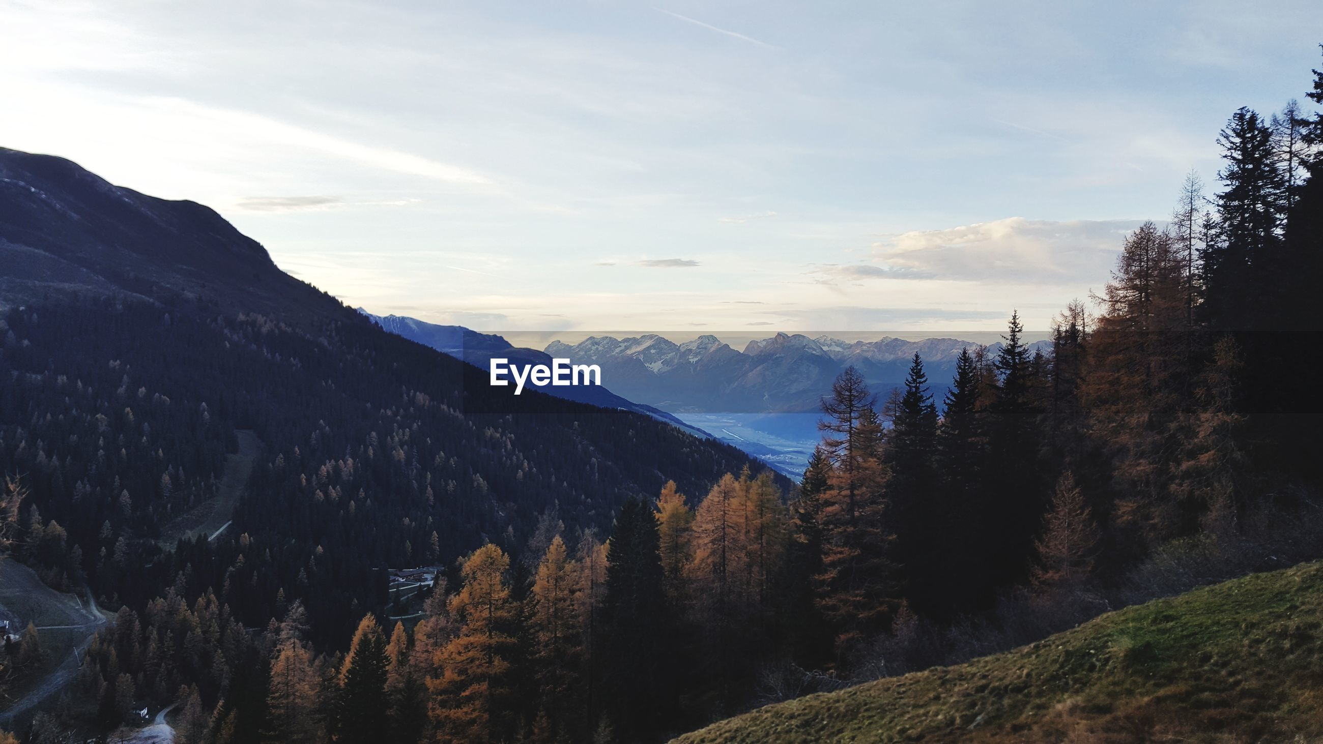 SCENIC VIEW OF MOUNTAINS AGAINST SKY AT FOREST