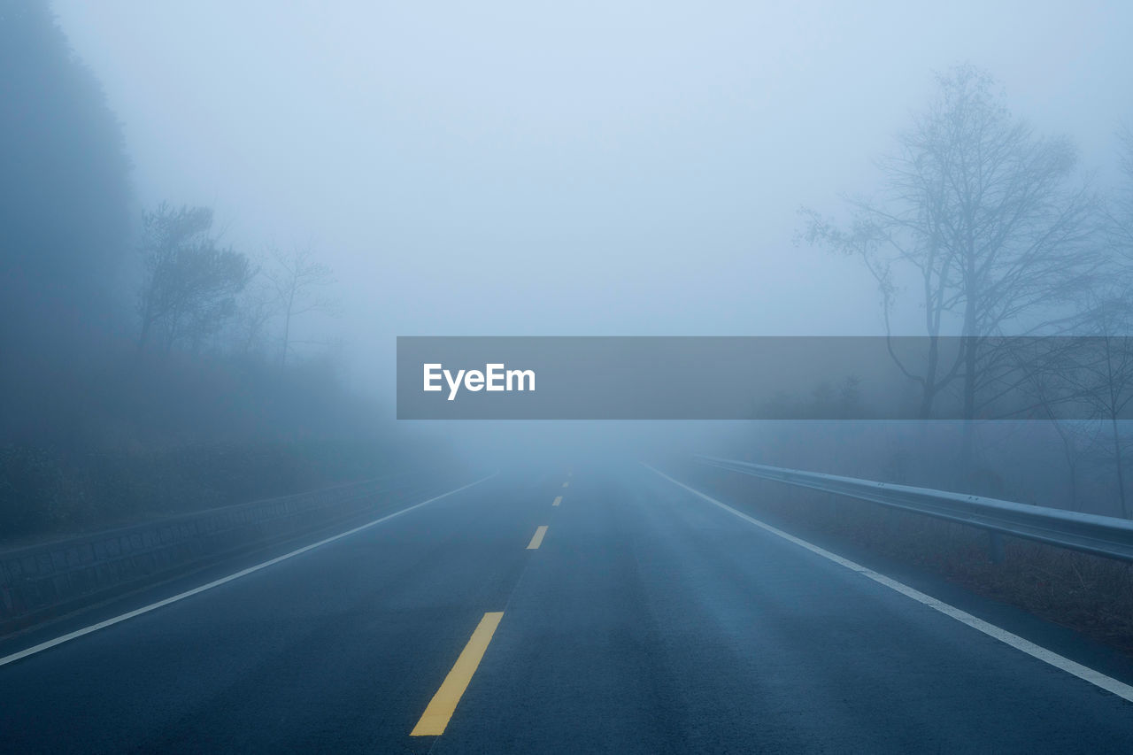 road, fog, road marking, symbol, marking, transportation, the way forward, direction, sign, tree, no people, diminishing perspective, nature, plant, day, beauty in nature, vanishing point, empty road, outdoors, dividing line, long