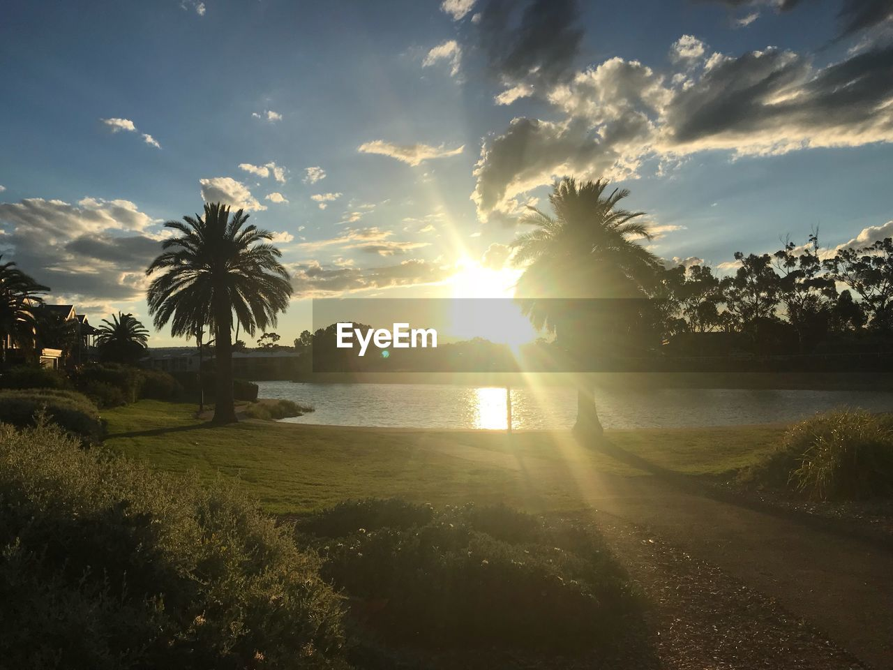 sky, beauty in nature, plant, water, cloud - sky, sunset, tree, scenics - nature, tranquil scene, tranquility, palm tree, nature, sun, tropical climate, land, sunbeam, sunlight, no people, growth, outdoors, lens flare, coconut palm tree