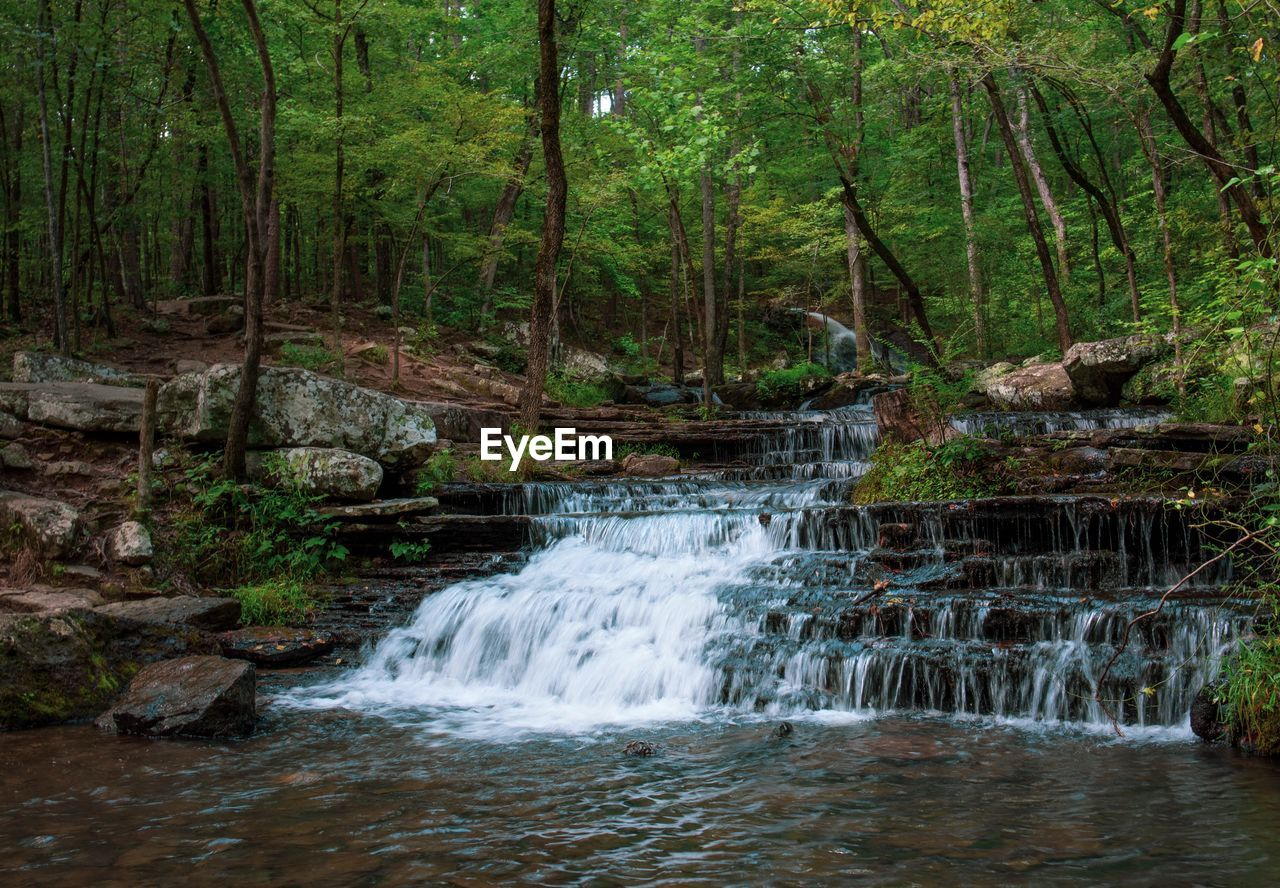 forest, tree, water, motion, land, plant, beauty in nature, scenics - nature, flowing water, no people, blurred motion, nature, waterfall, long exposure, day, woodland, environment, rock, solid, outdoors, rainforest, flowing, stream - flowing water, power in nature