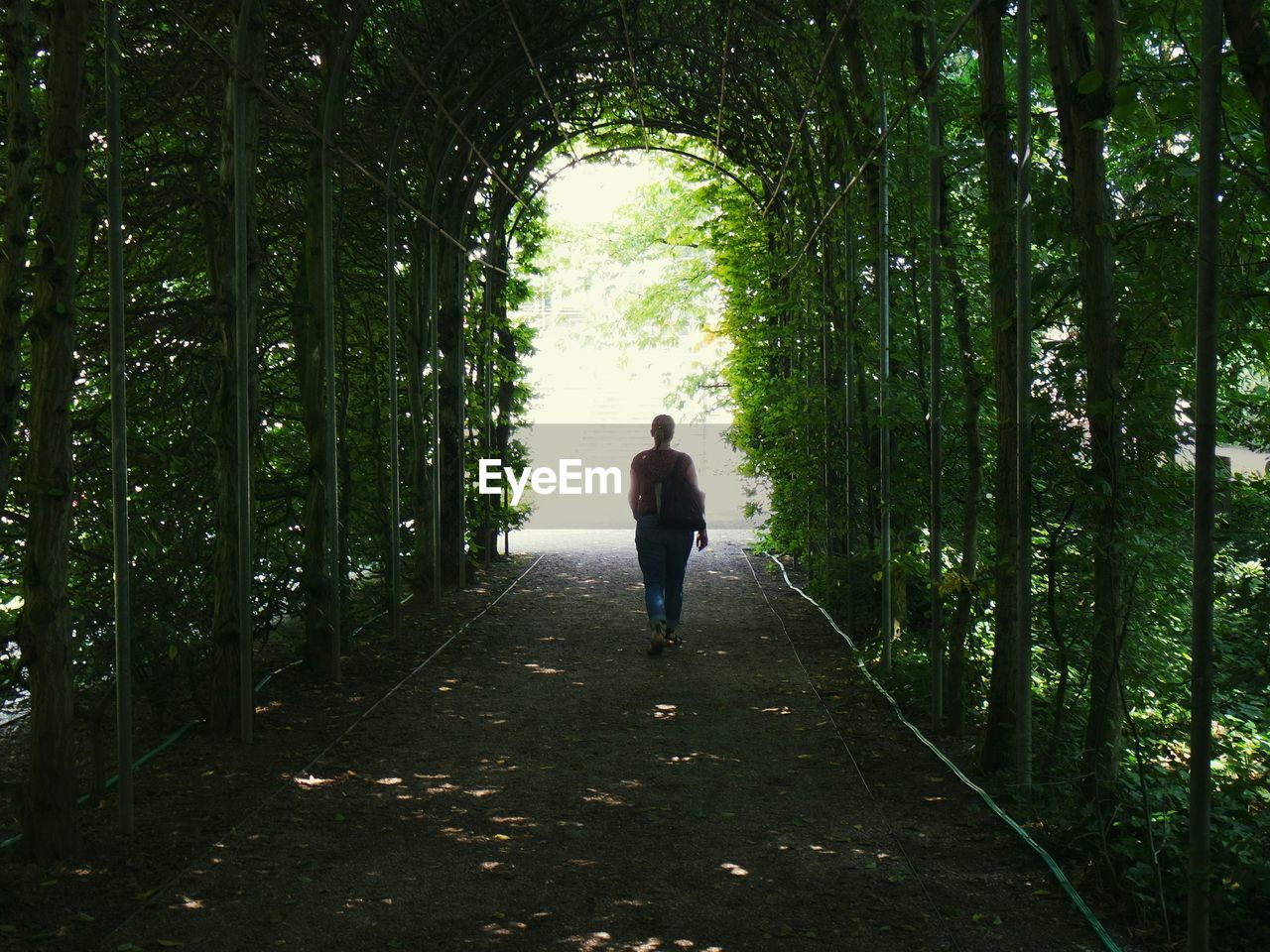 Rear View Of Woman Walking In Green Tunnel
