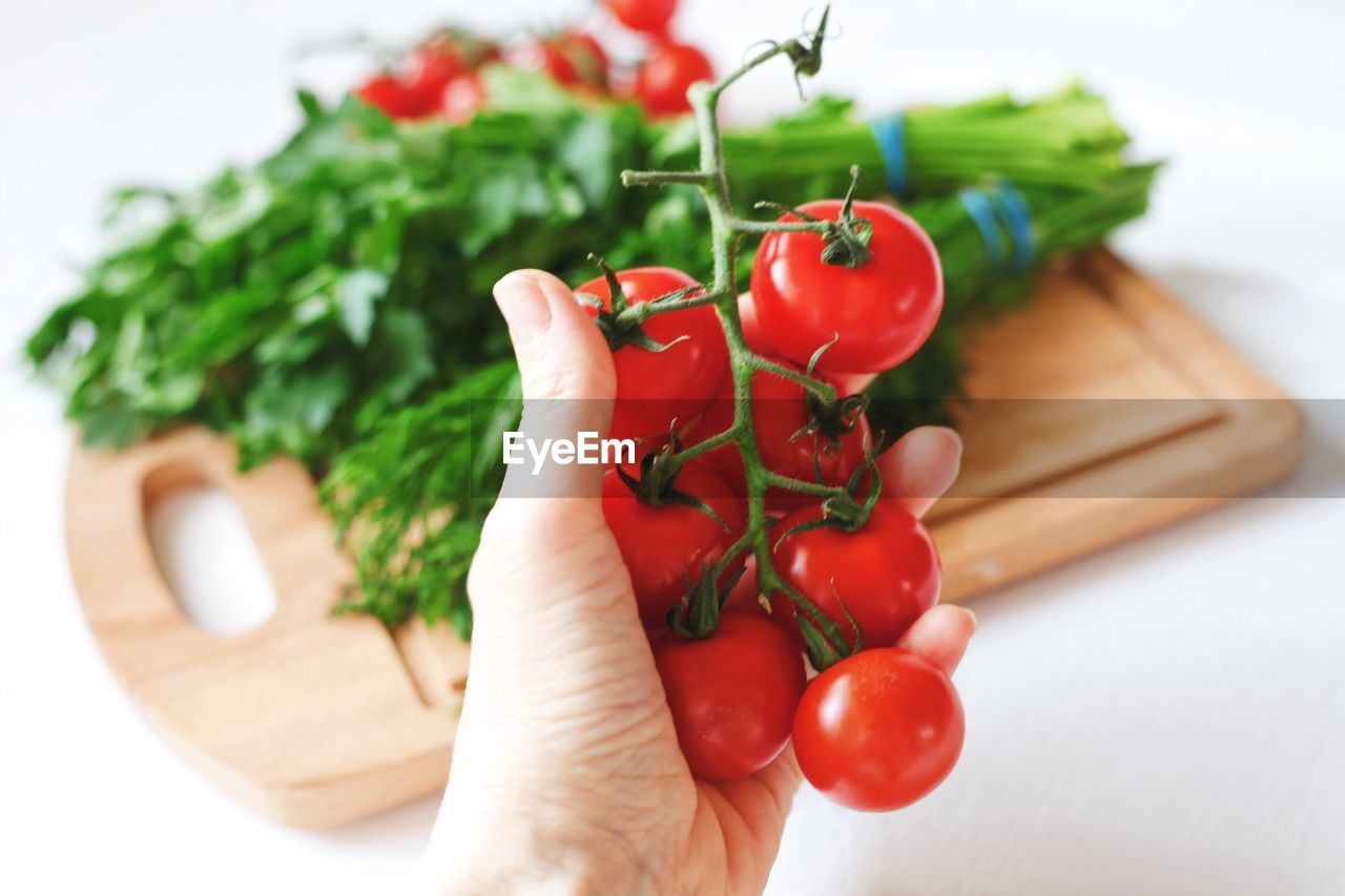 healthy eating, human hand, food, food and drink, vegetable, hand, freshness, wellbeing, red, tomato, fruit, holding, indoors, one person, human body part, green color, close-up, real people, focus on foreground, cherry tomato, finger