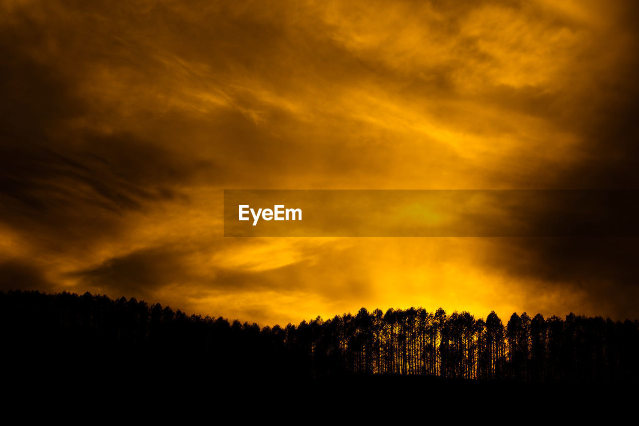 cloud - sky, sky, beauty in nature, tree, silhouette, scenics - nature, sunset, tranquil scene, tranquility, orange color, plant, no people, idyllic, non-urban scene, nature, dramatic sky, land, environment, landscape, outdoors, power in nature, ominous