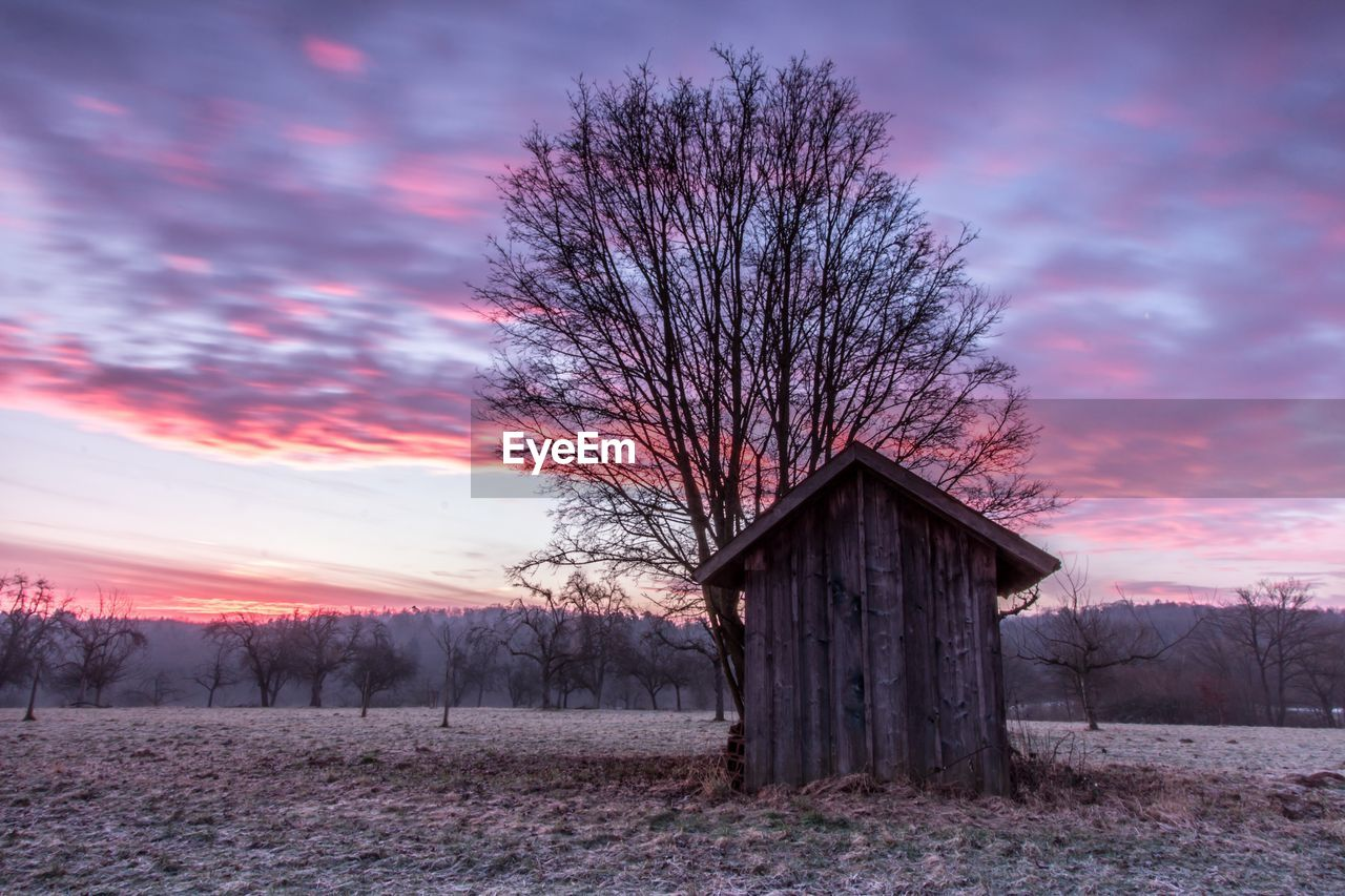 Wooden cabin and bare tree on field against dramatic sky