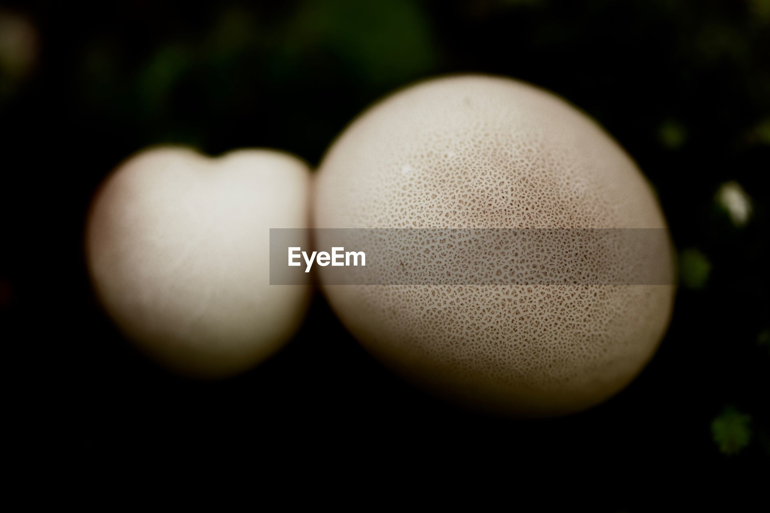 close-up, no people, food, food and drink, freshness, focus on foreground, wellbeing, indoors, still life, healthy eating, selective focus, vulnerability, egg, shape, fragility, nature, black background, white color, design