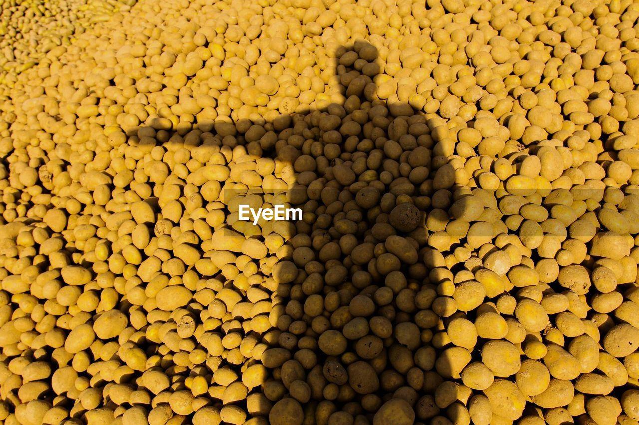Shadow of man gesturing over potatoes