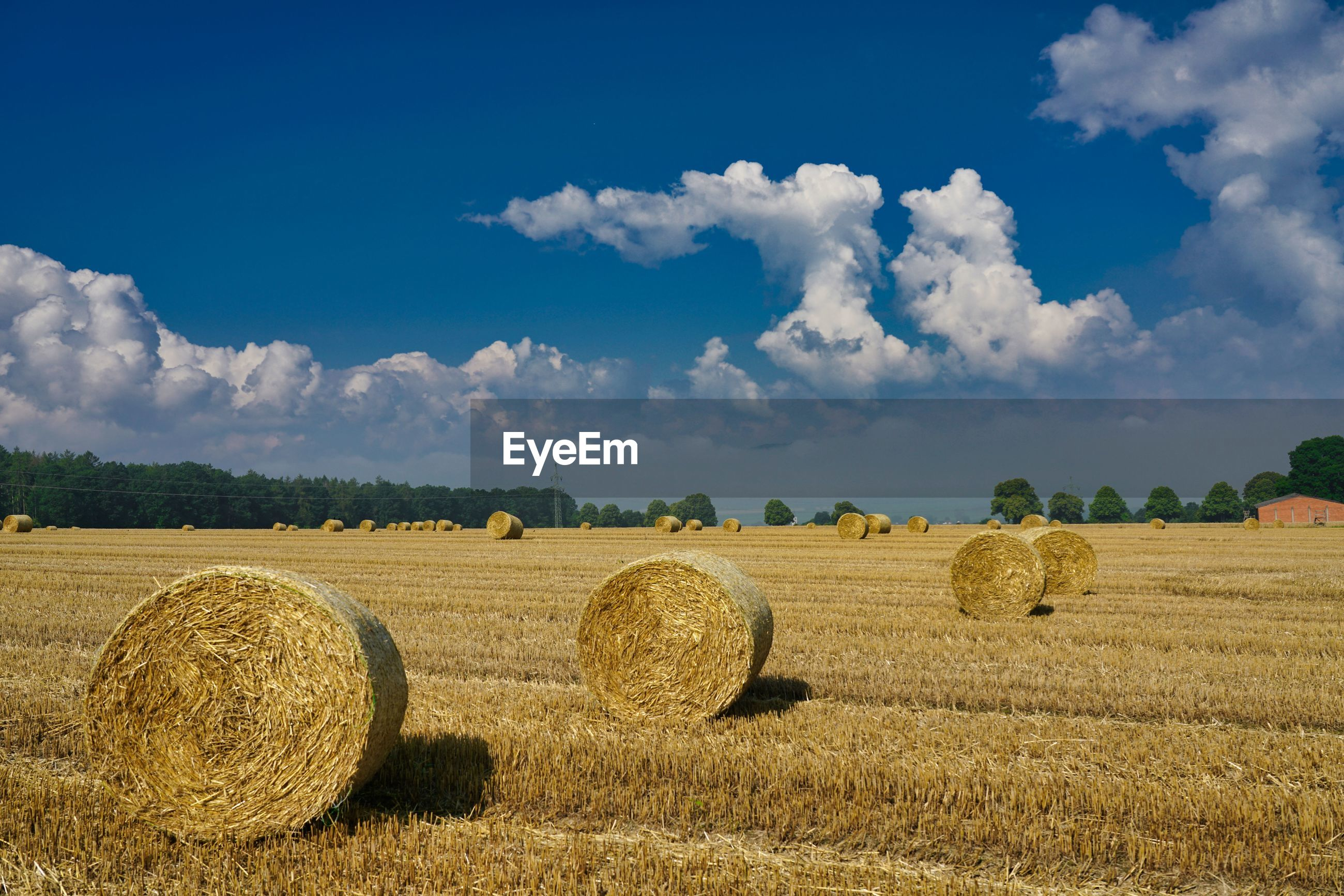 HAY BALES IN FIELD AGAINST SKY