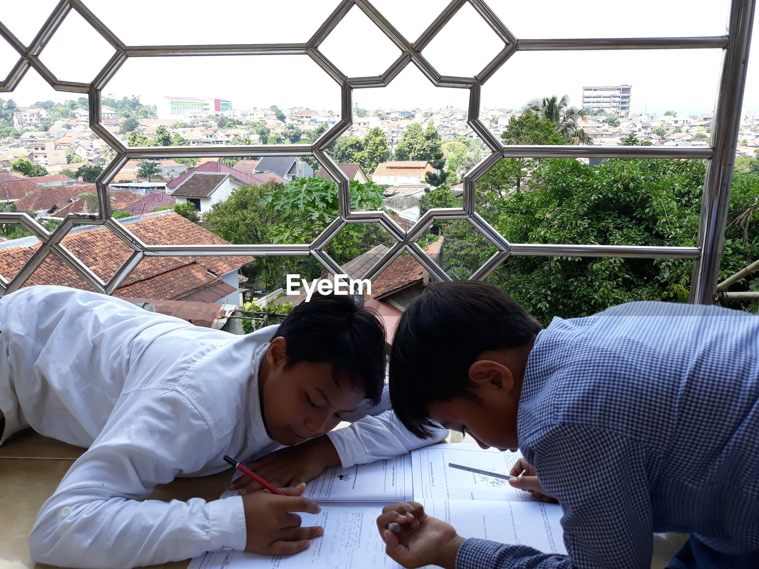 Brothers studying by window