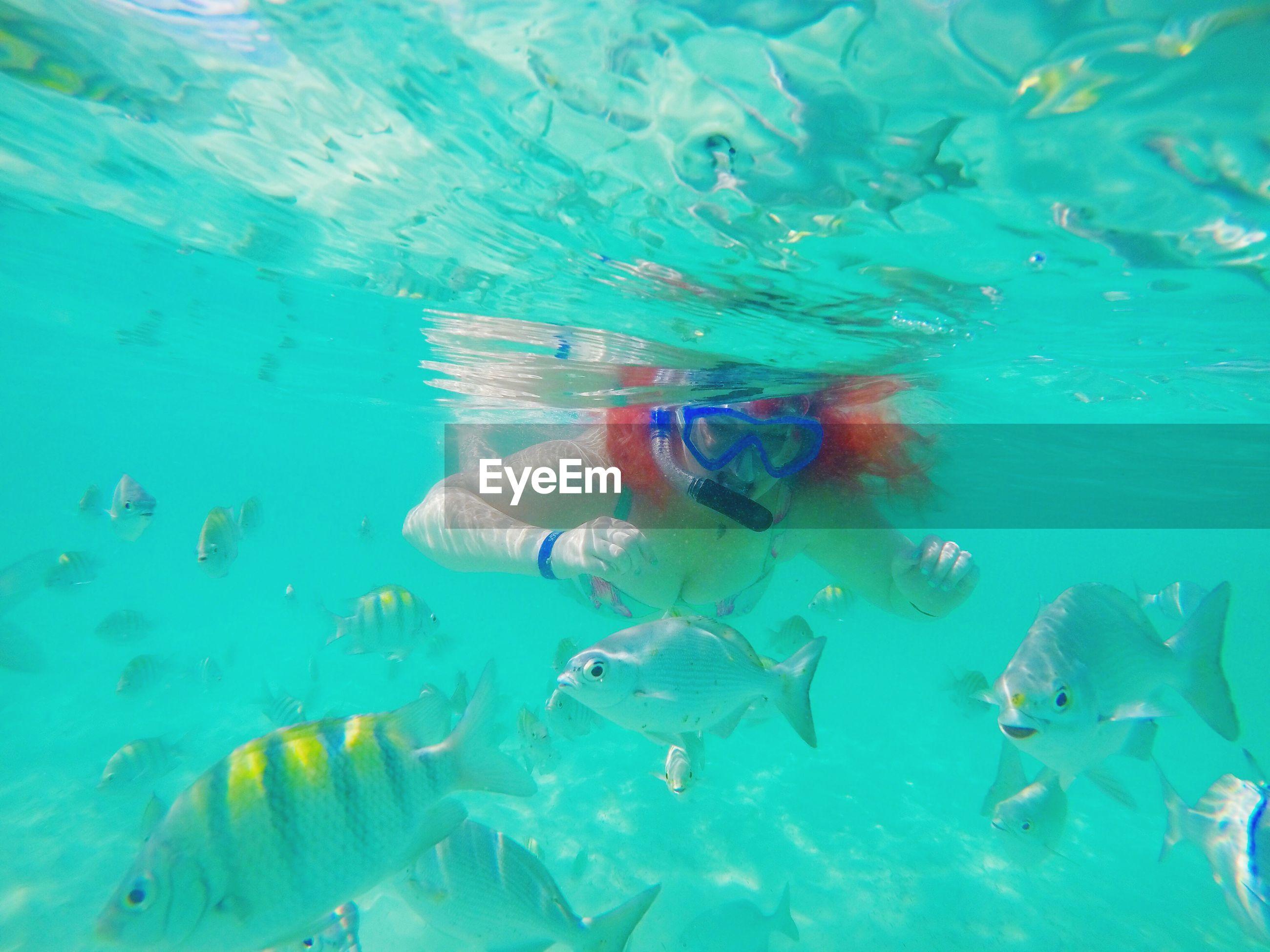 Young woman scuba diving undersea