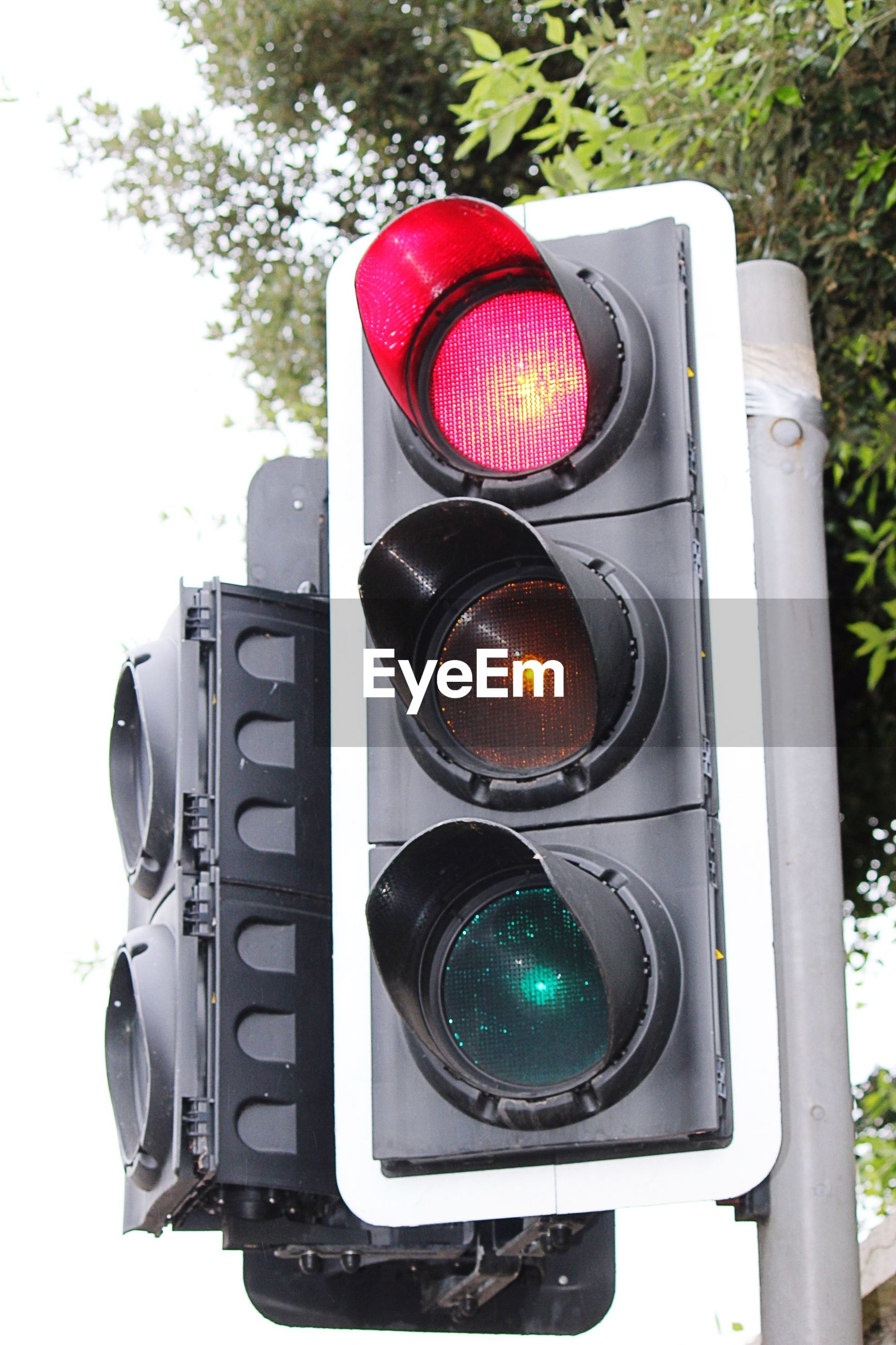 Close-up of road signal