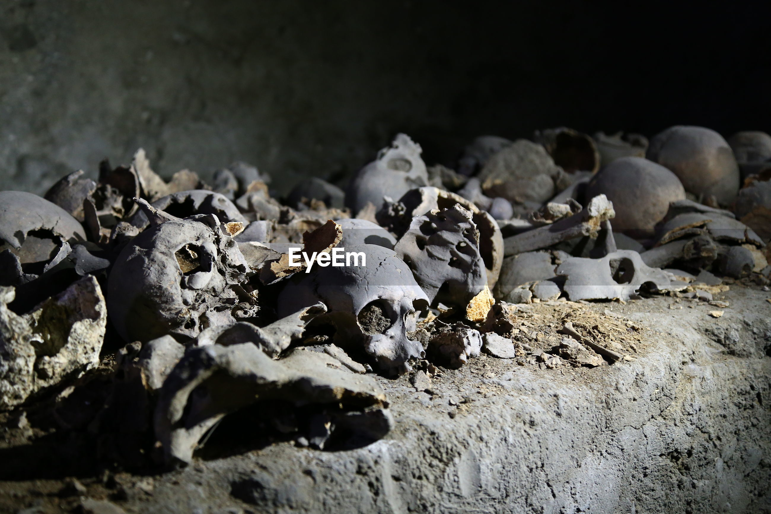 Close-up of abandoned human skulls against wall