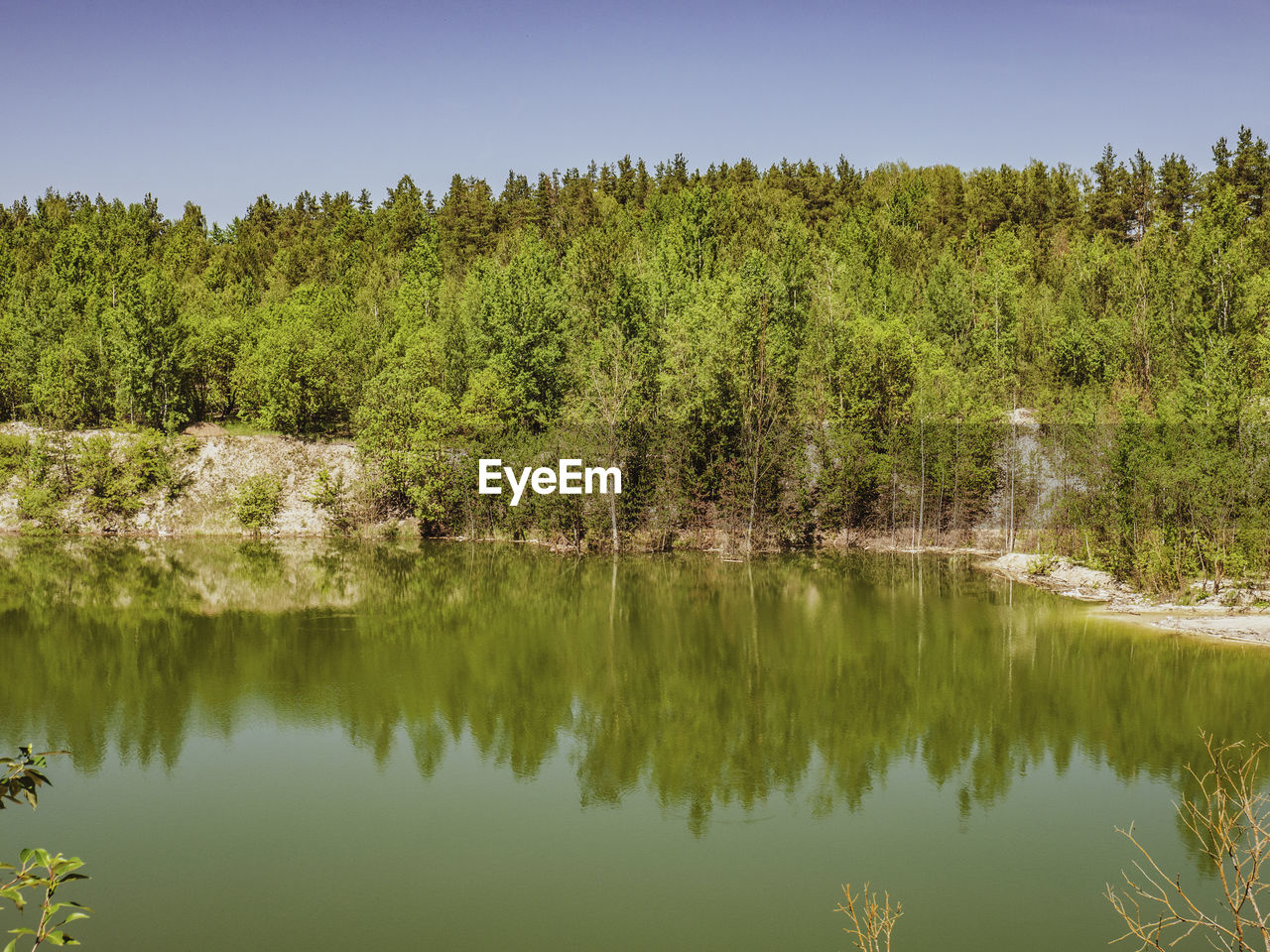 tree, plant, beauty in nature, reflection, water, tranquility, tranquil scene, lake, growth, scenics - nature, waterfront, green color, no people, day, nature, sky, clear sky, non-urban scene, idyllic, reflection lake