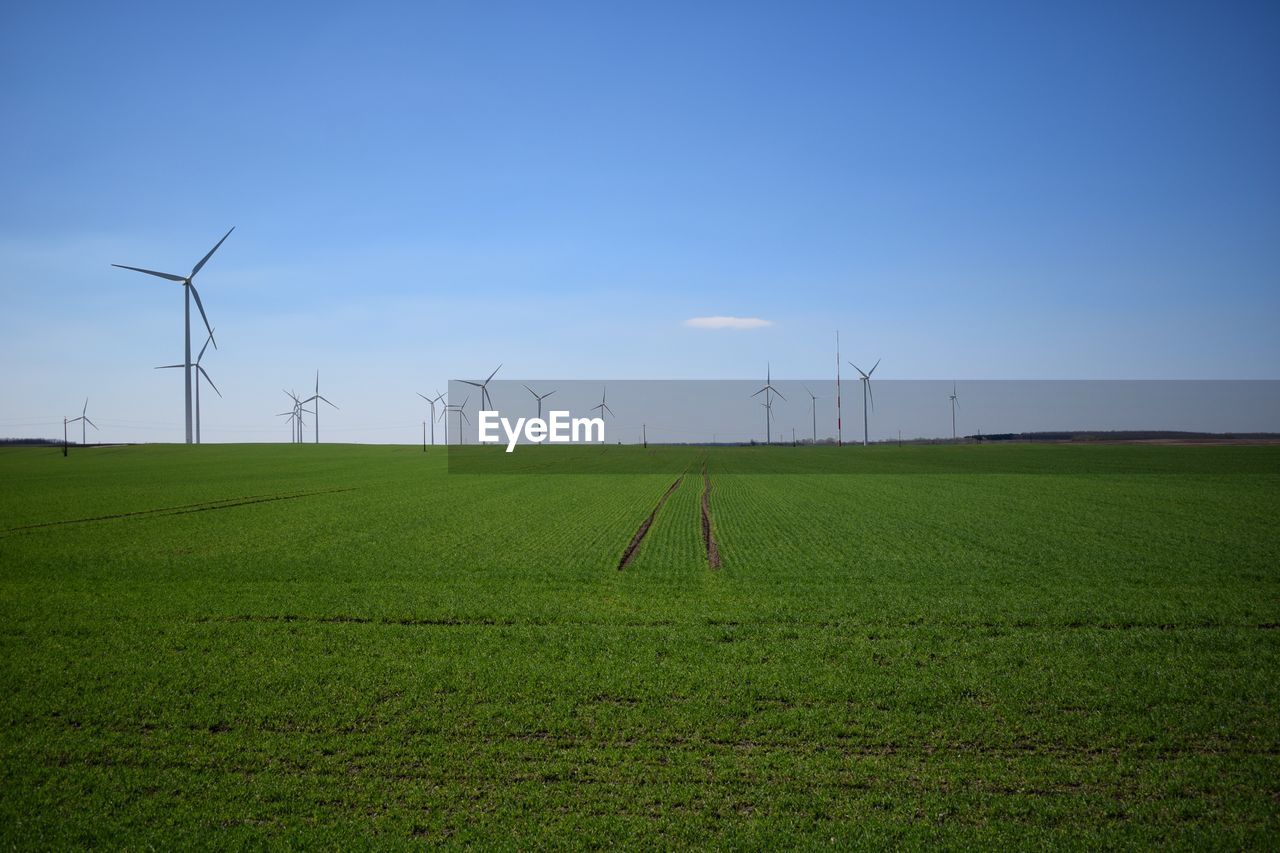 environment, fuel and power generation, environmental conservation, land, sky, turbine, wind turbine, landscape, alternative energy, renewable energy, field, grass, wind power, green color, nature, technology, rural scene, plant, beauty in nature, day, no people, outdoors, sustainable resources, power supply