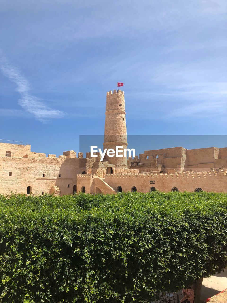 architecture, built structure, building exterior, plant, sky, nature, building, history, the past, fort, tower, day, tree, castle, ancient, no people, travel destinations, outdoors, cloud - sky, sunlight