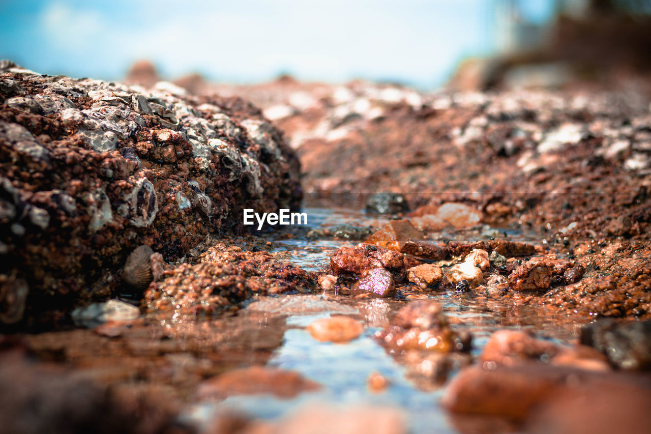 selective focus, water, rock, rock - object, solid, nature, no people, day, sea, close-up, beach, land, tranquility, textured, surface level, outdoors, motion, rough, sunlight, pollution, flowing water