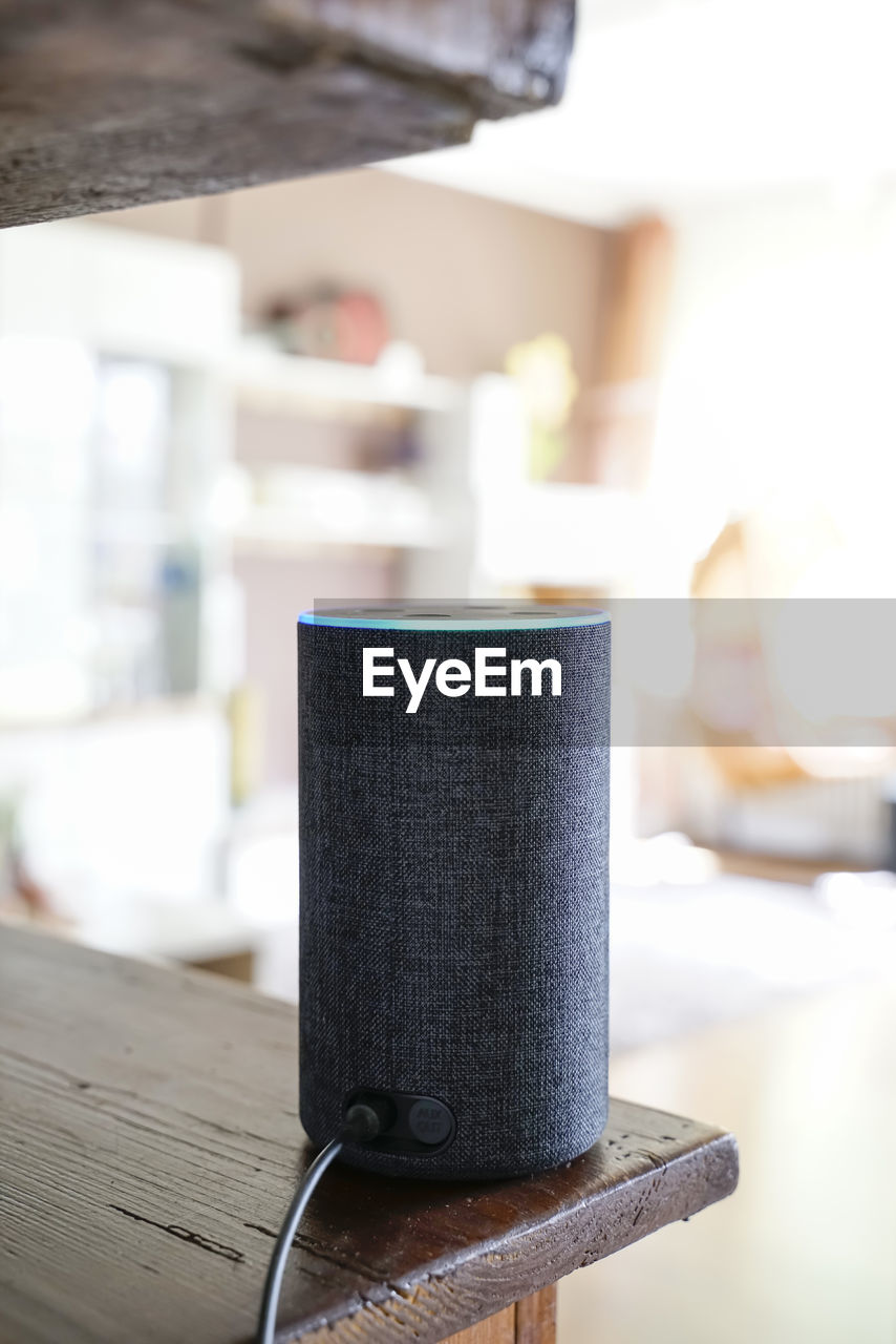 Speaker with voice recognition controls entertainment electronics in the living room