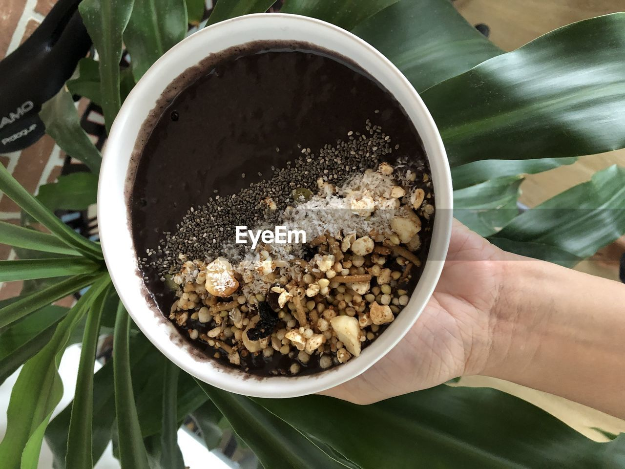 human hand, hand, food and drink, human body part, food, one person, holding, bowl, real people, close-up, freshness, high angle view, unrecognizable person, body part, lifestyles, growth, green color, seed, leaf, finger